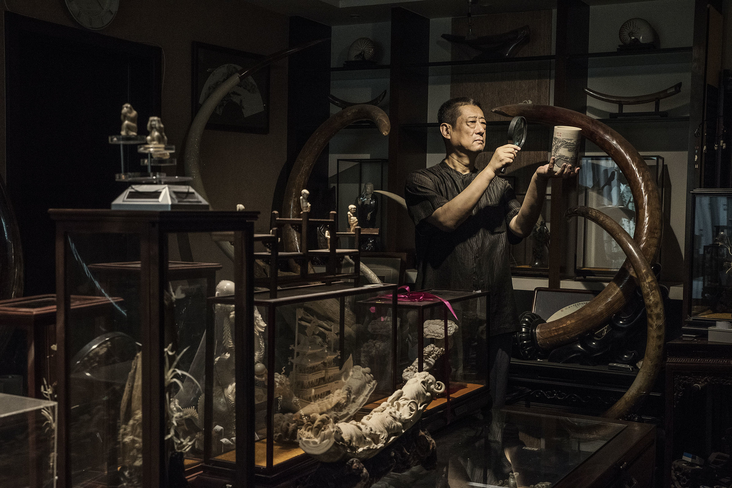 Chen Shu the president of the China Association of Mammoth Ivory Art Research, posing for a portrait at his apartment filled with Mammoth ivory carved objects and tusks.