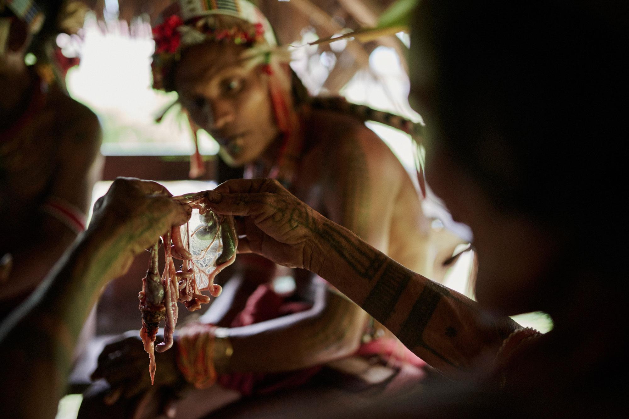 Mentawai_19.jpg