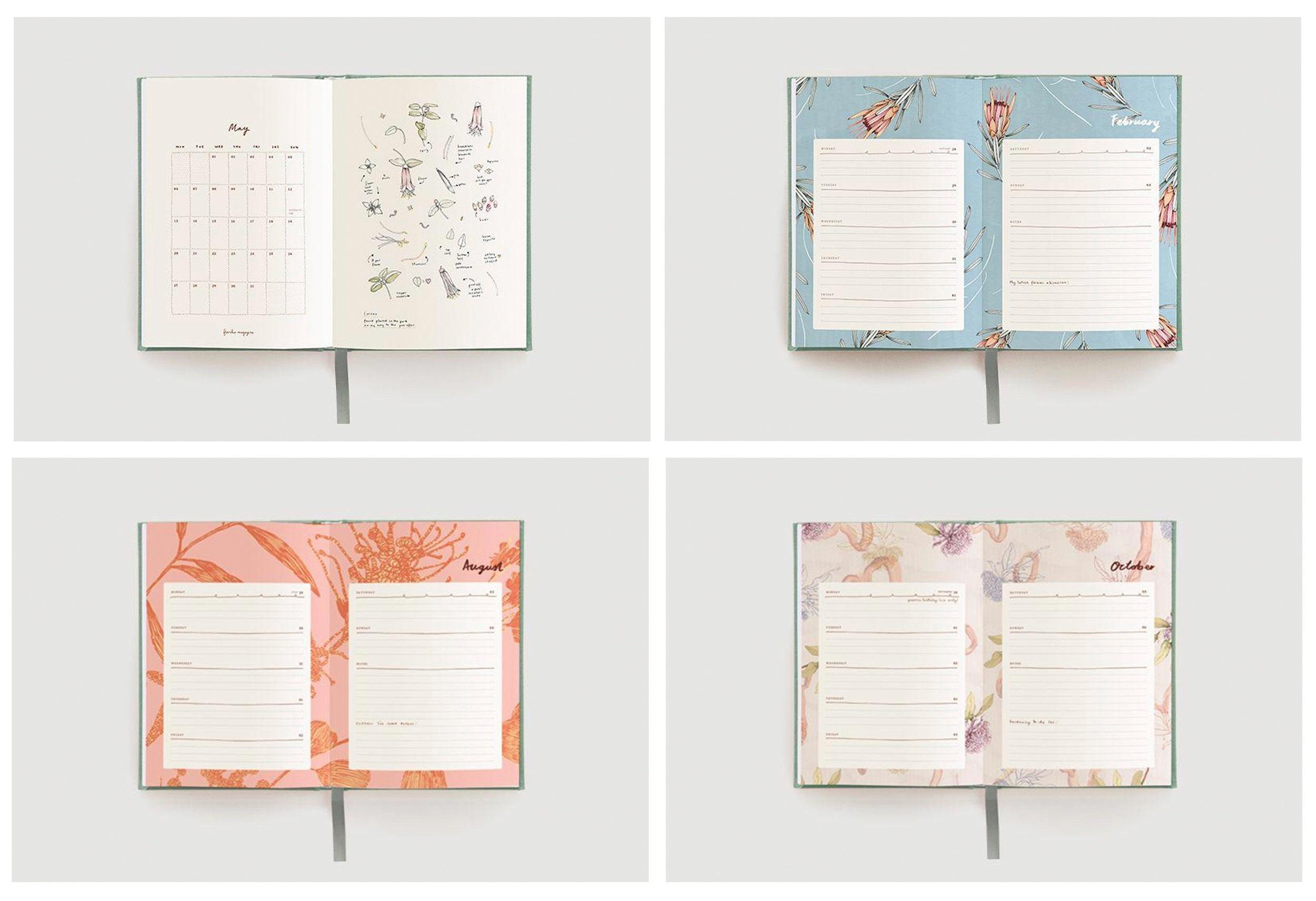 frankie diary 0.jpg