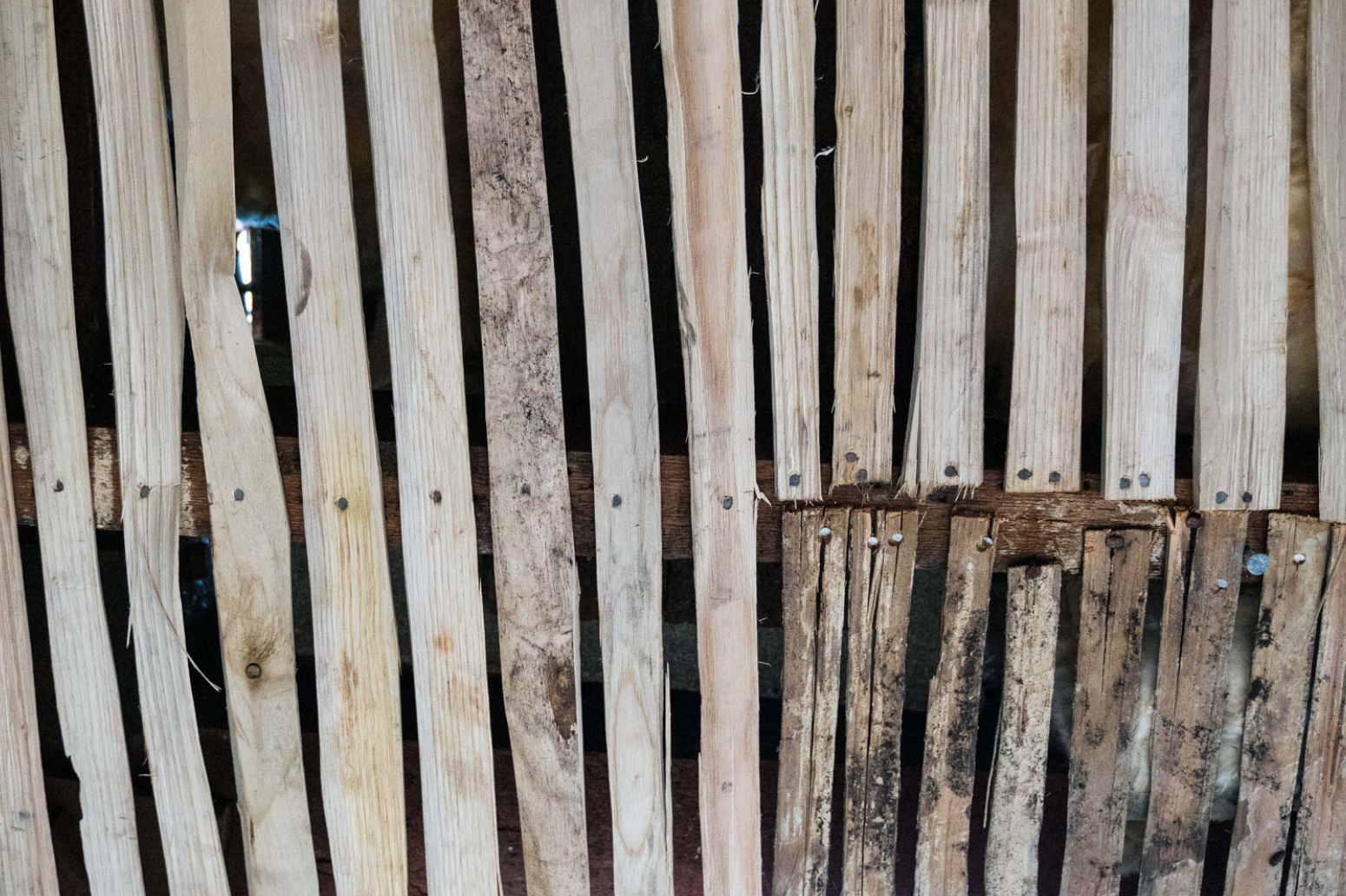 New laths (left) are gradually replacing the elderly laths (bottom right) that are layered beneath the ceiling of the Meeting House