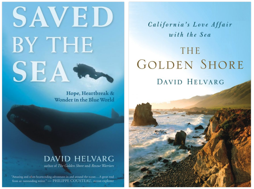 Writer David Helvarg runs Blue Frontier and is organizing the March for the Ocean in June. Click here to find out what he's up to, or to buy one of his wonderful books!