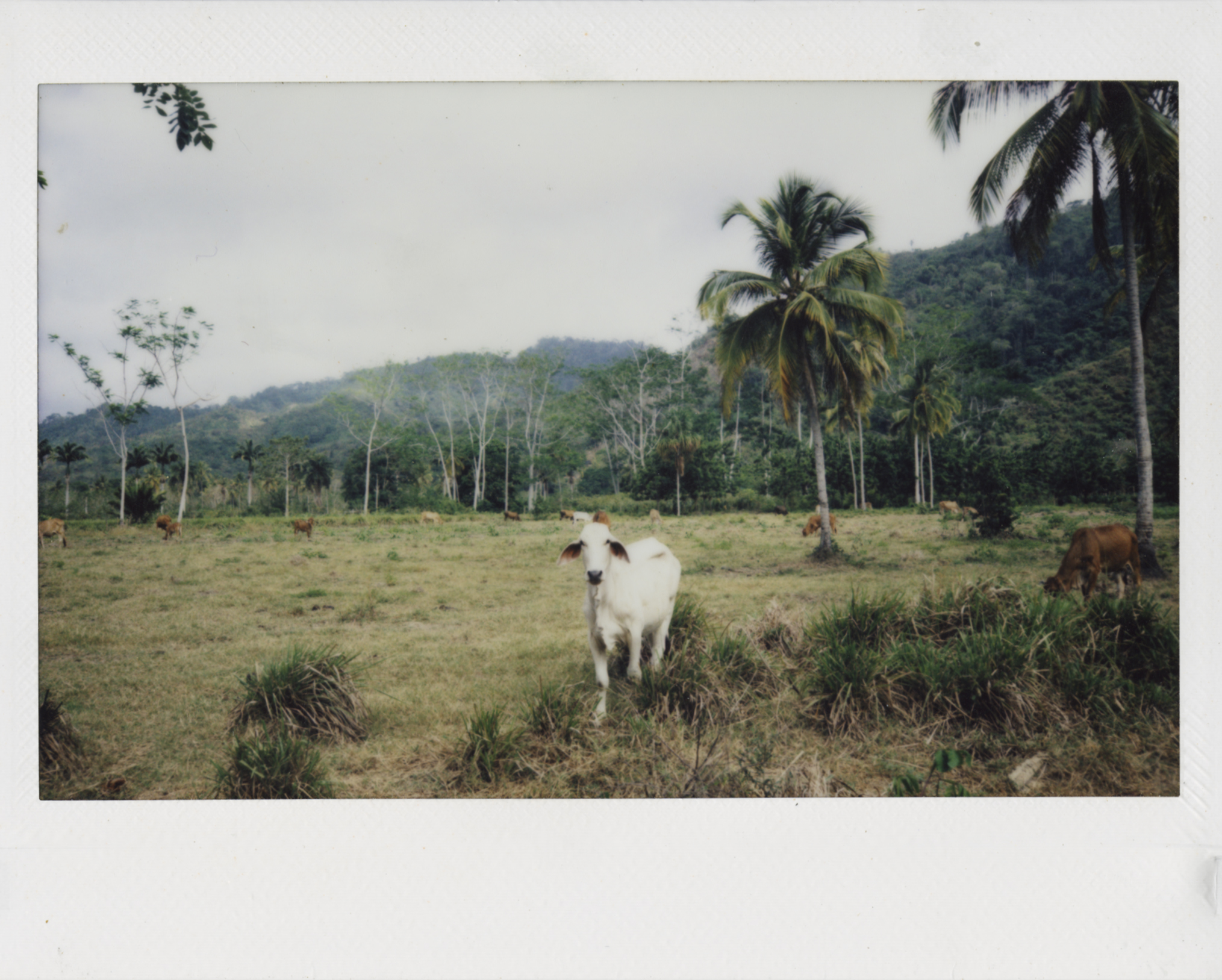 Colombia_03.jpg