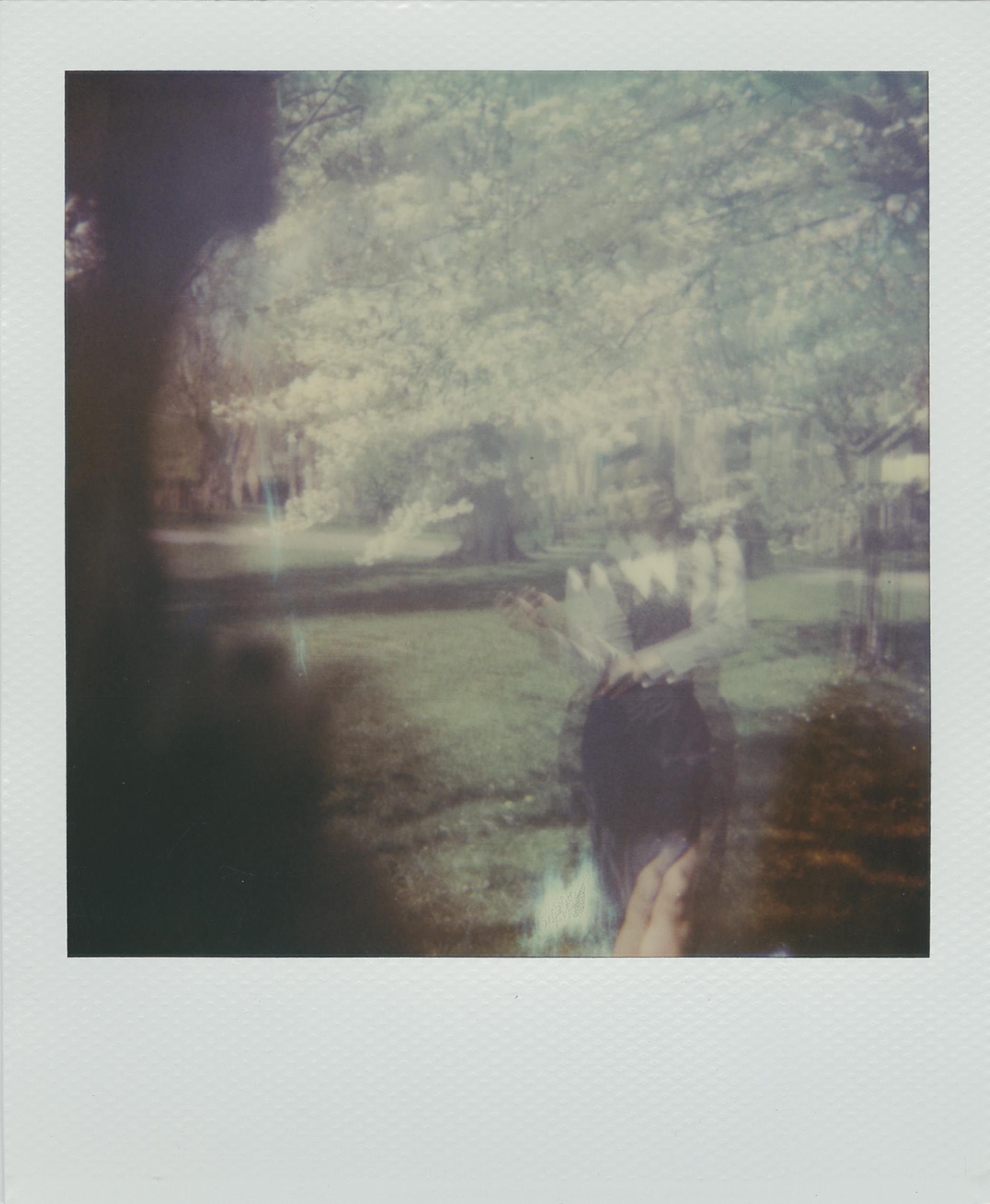 desta_polaroid_04.jpg