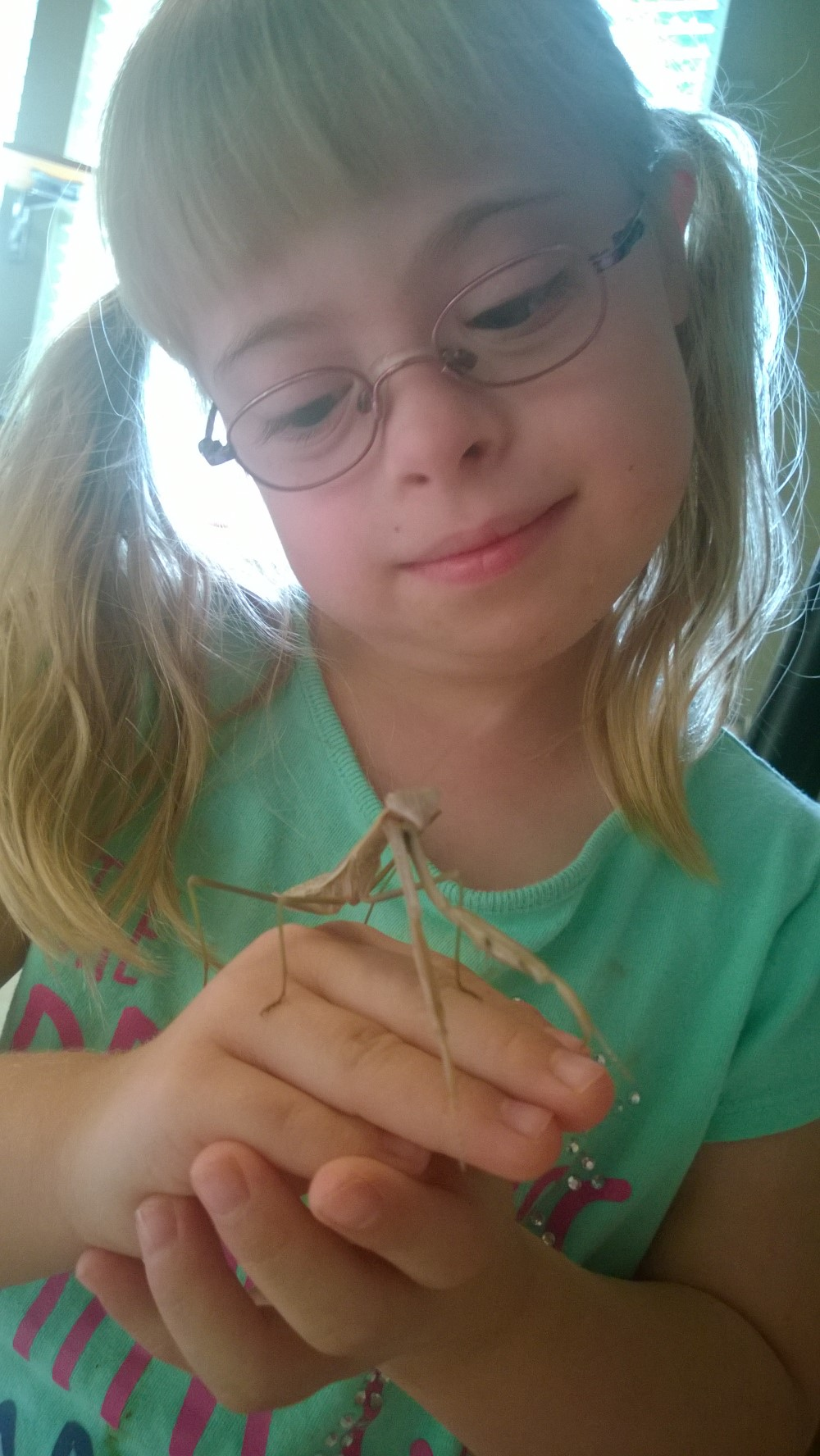 Totally harmless, both the kid and the mantis.