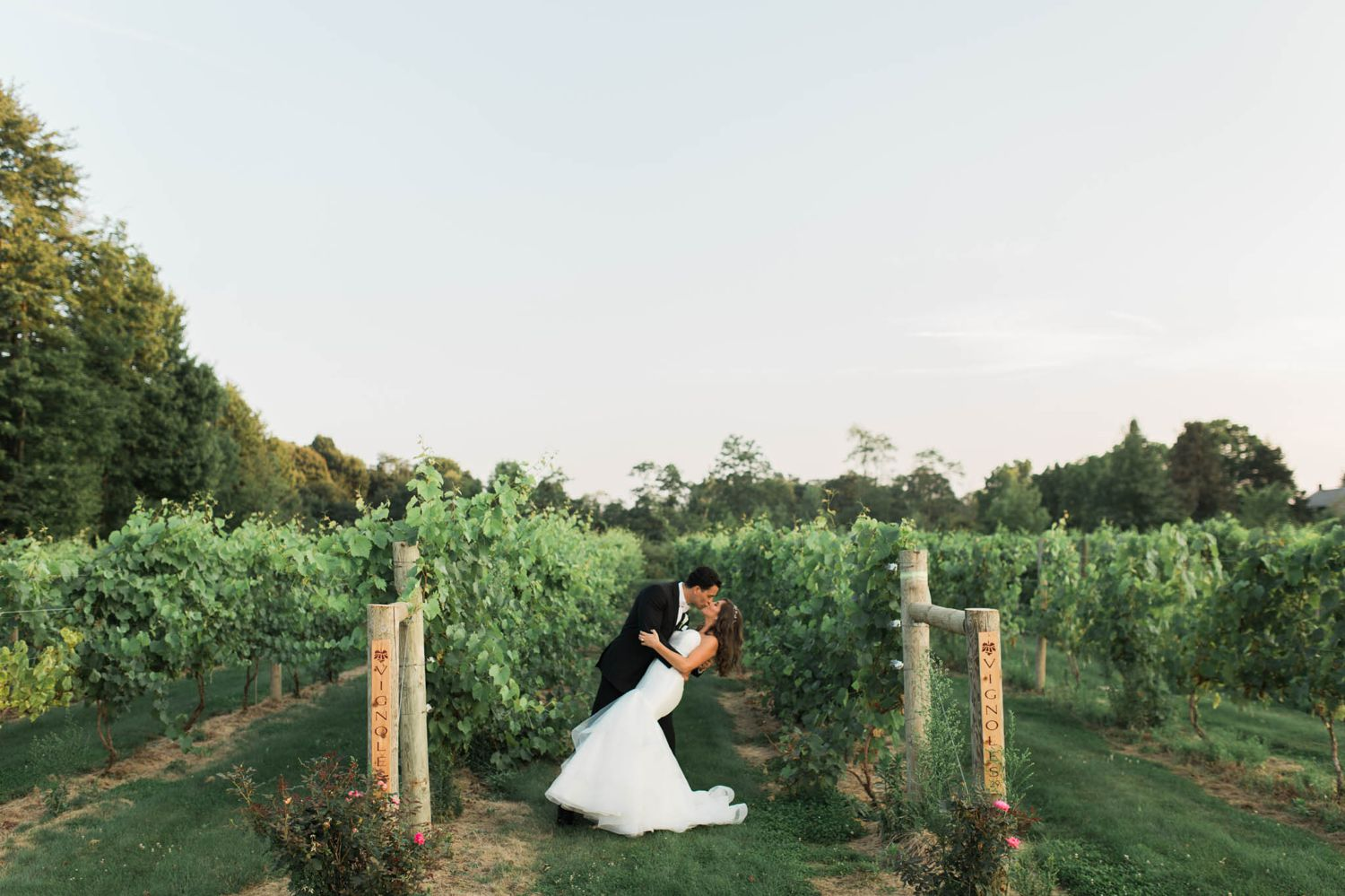 chloe-and-lou-vineyards-at-pinelake-tracylynn-photography-youngstown-ohio 30.jpg