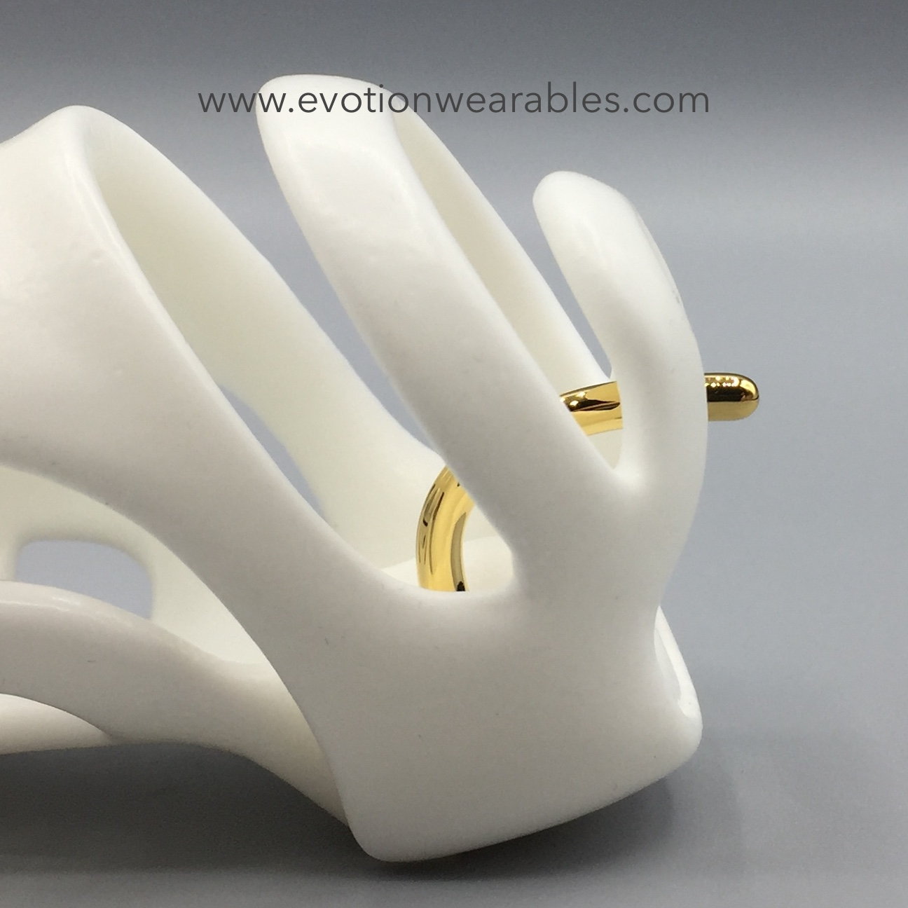 White with Gold Pin 05.JPG