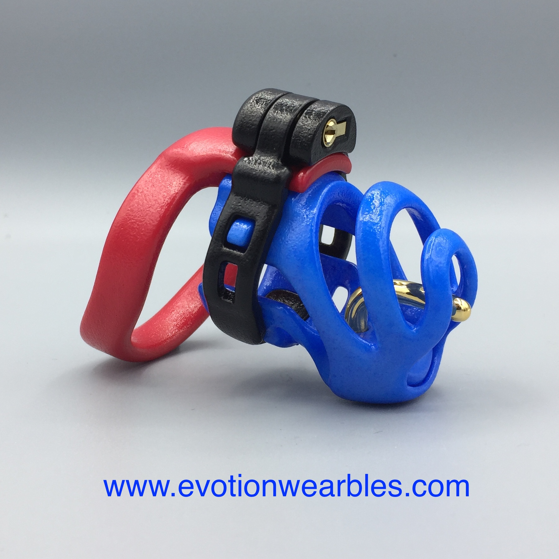 Red:black:blue with gold pin.JPG