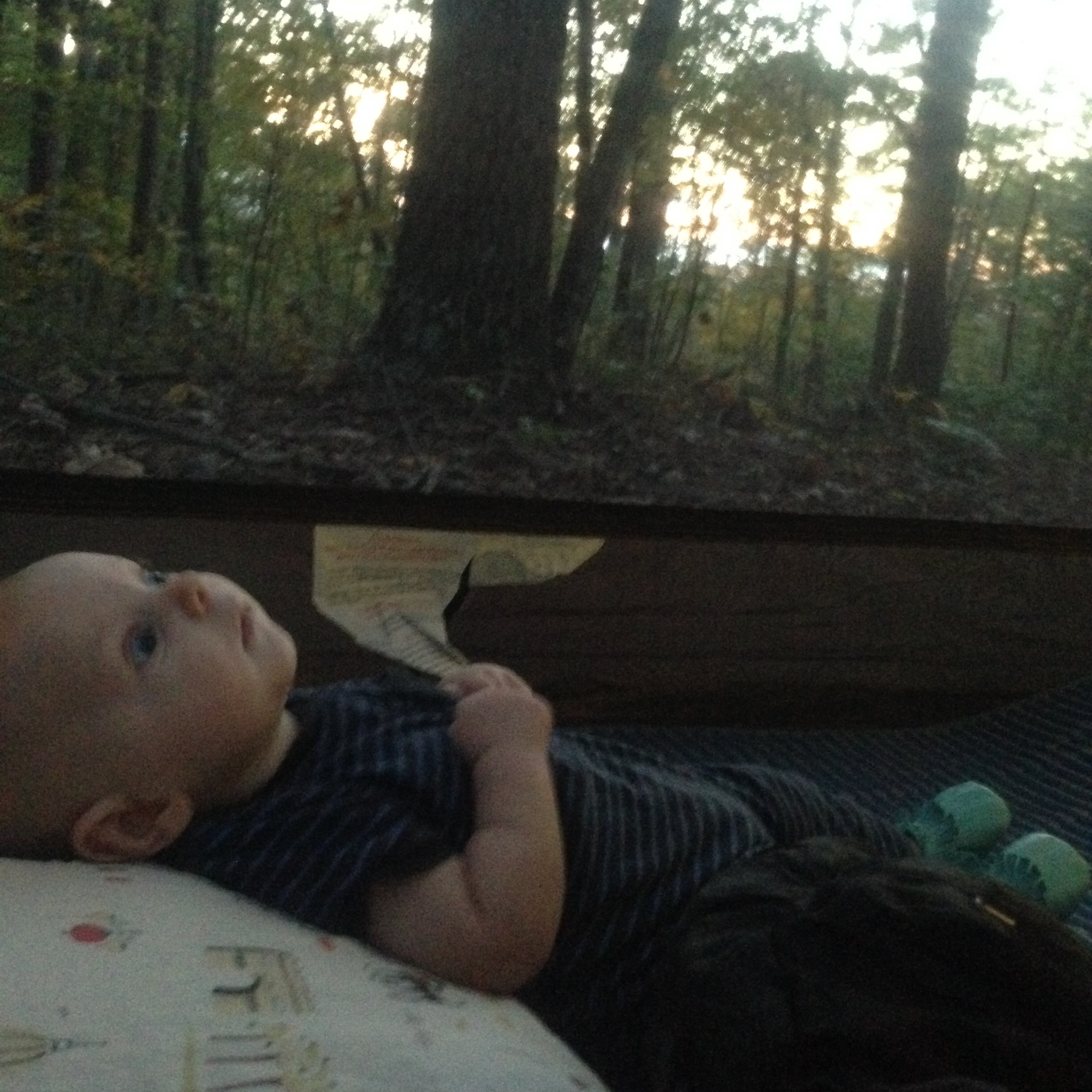 ^ The look of awe and wonder that is camping in the outdoors