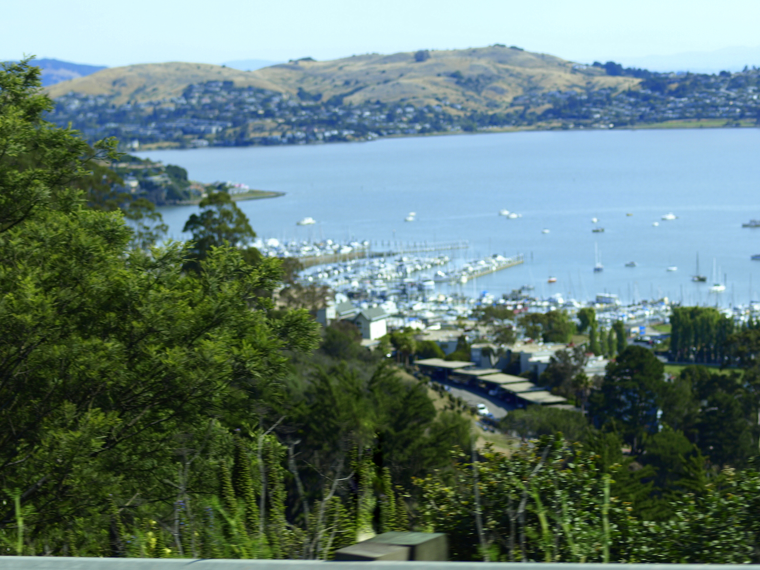 Sausalito, CA (photo taken from a moving car)