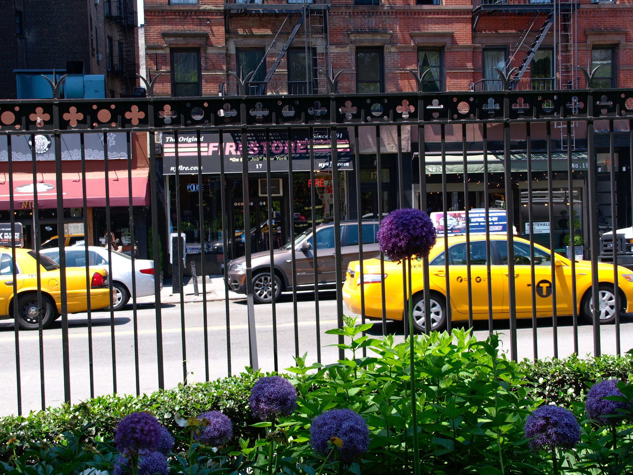 flower-in-front-of-taxi.jpg