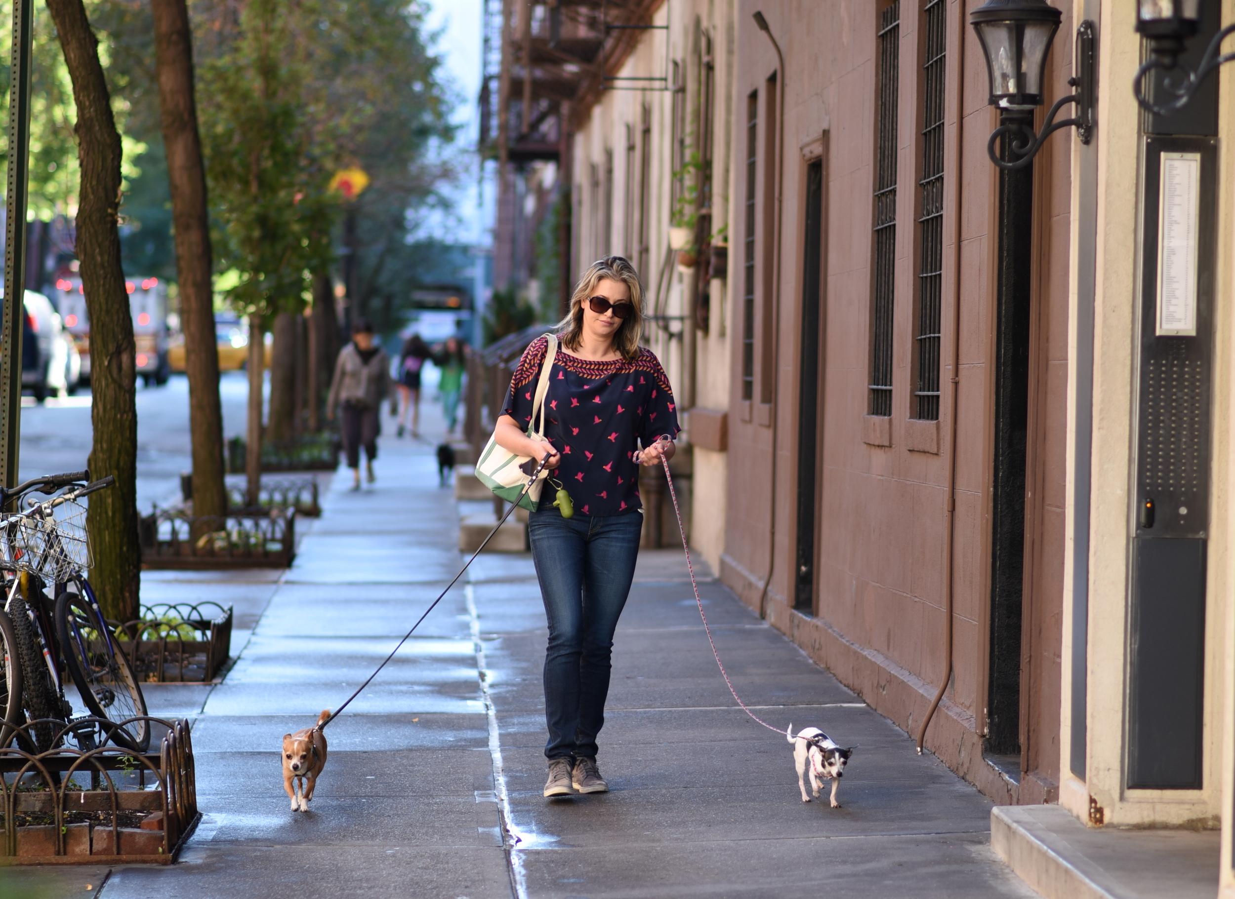 walking-dogs.jpg