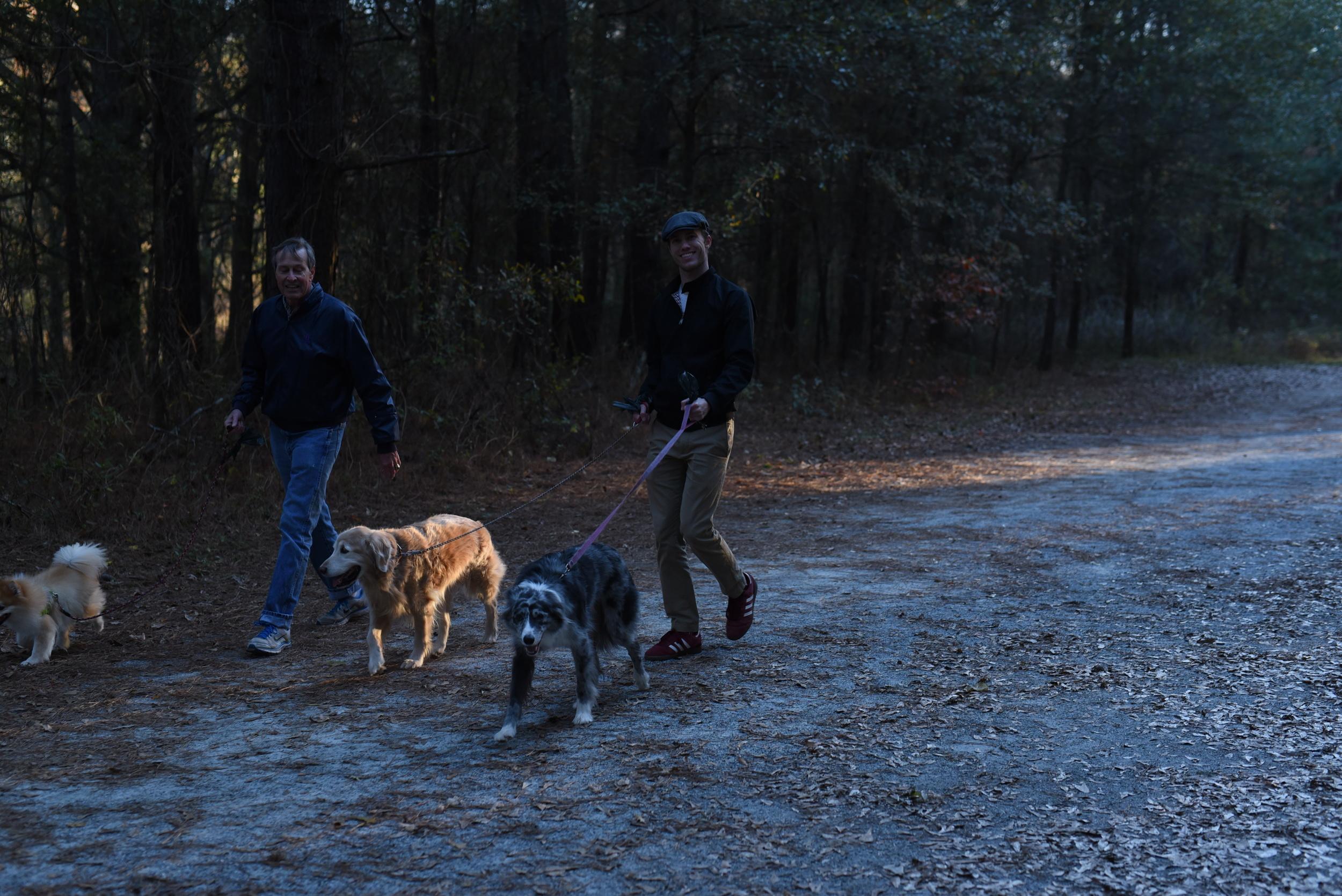 guy-walking-dogs.jpg