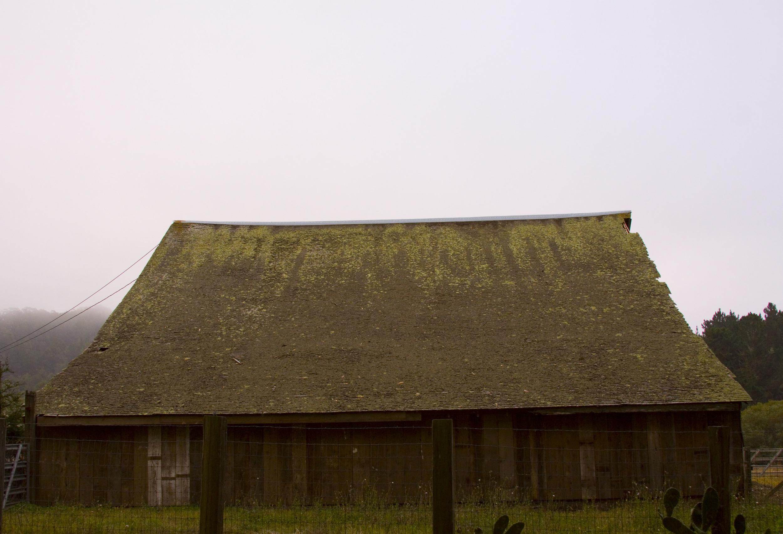 Lost in a Fog_17.jpg