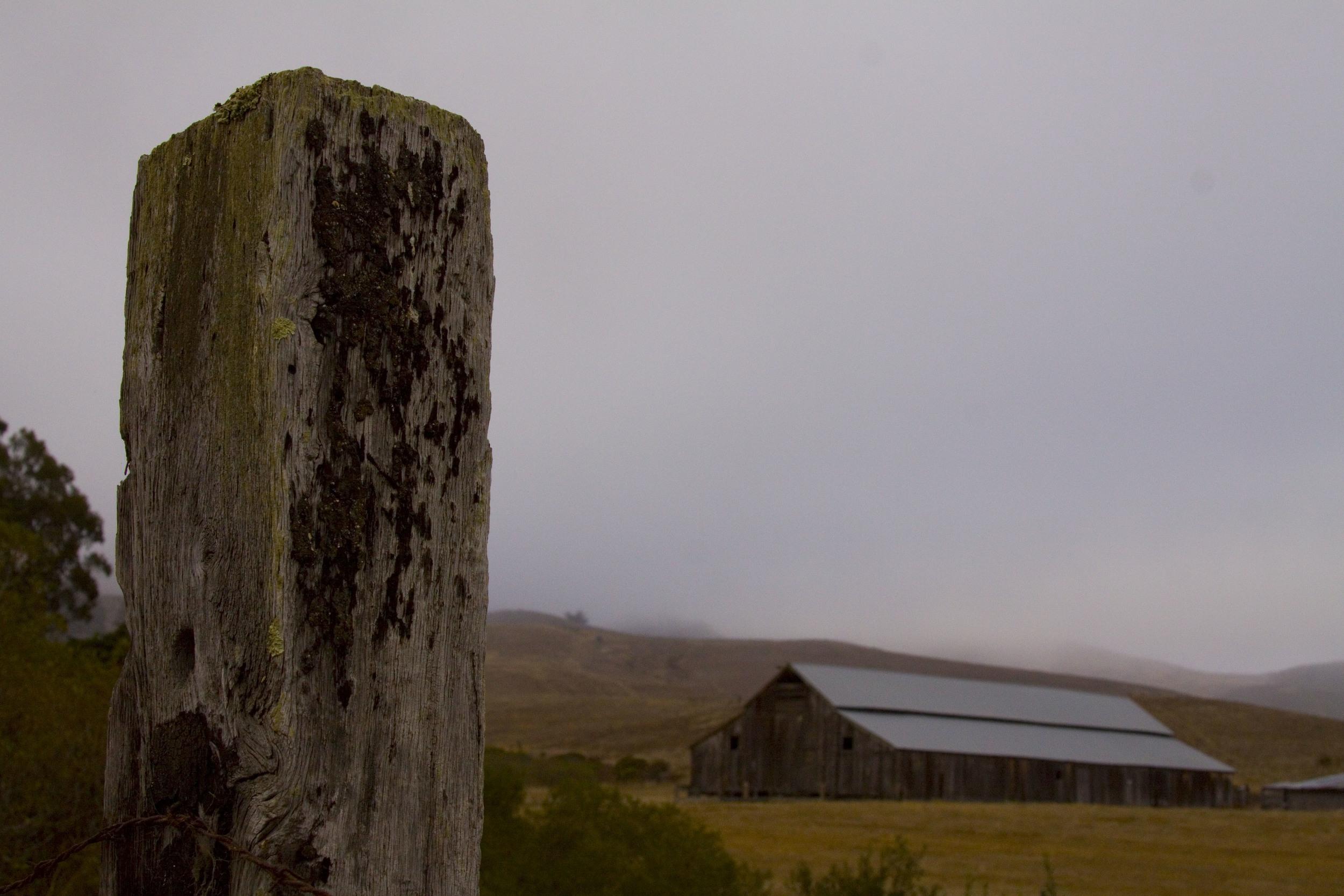 Lost in a Fog_54.jpg
