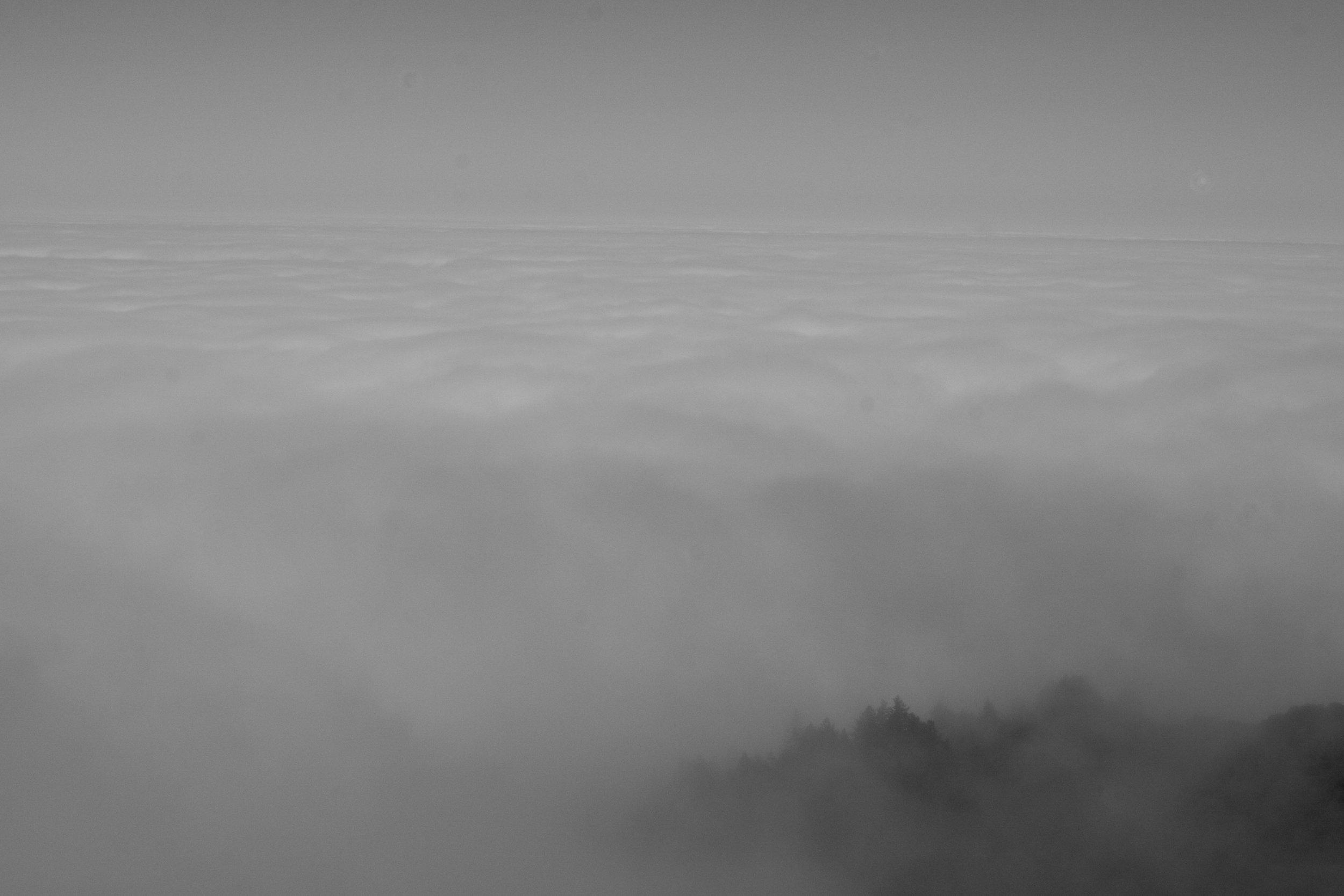 fogline_68.jpg