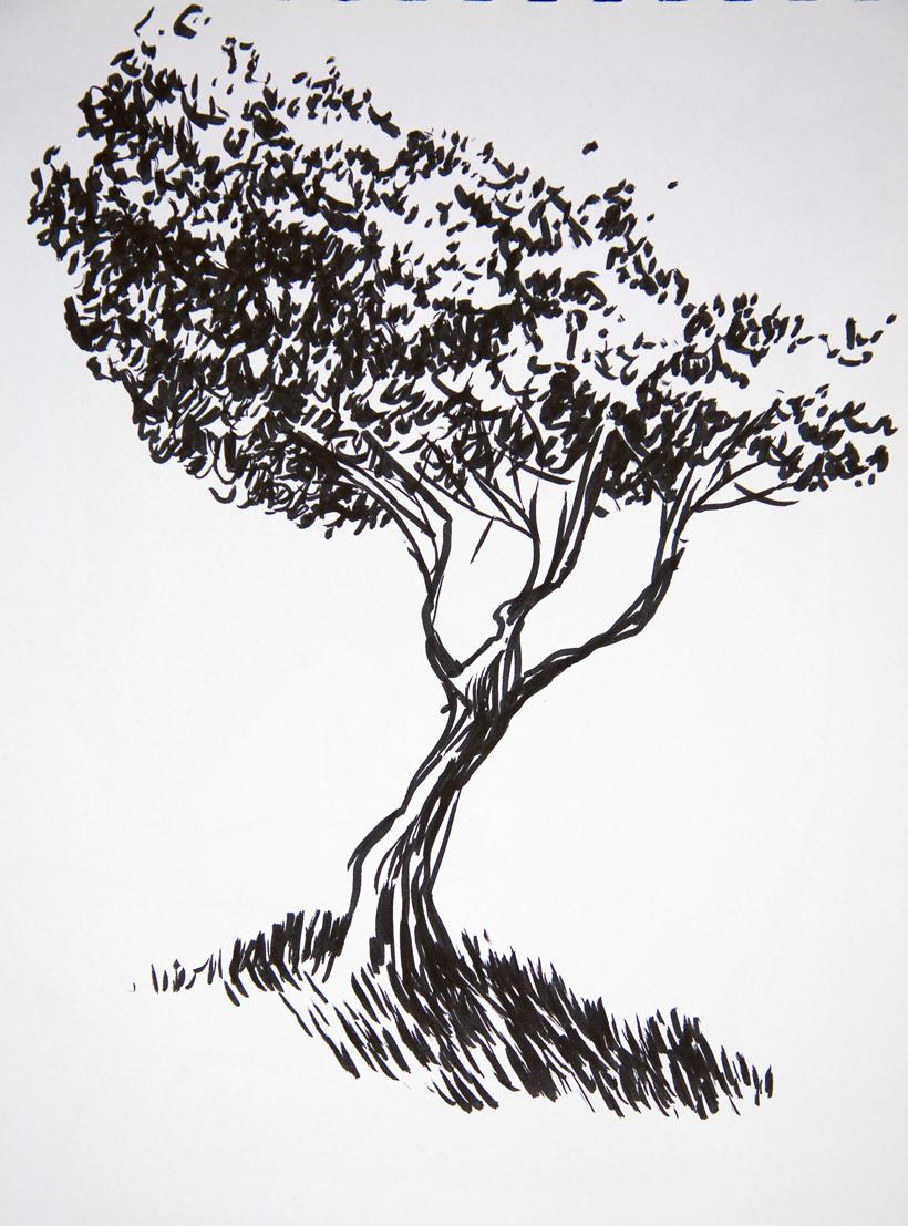 Tree72.jpg