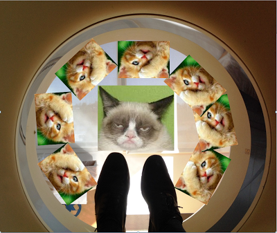 CAT+Scan1.PNG