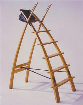 arch_ladder.jpg