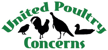 "UNITED POULTRY CONCERNS  ""United Poultry Concerns is dedicated to the compassionate and respectful treatment of chickens, turkeys, ducks and other domestic fowl. We hold that the treatment of these birds in the areas of food production, science, education, entertainment, and humane companionship situations has a significant effect upon human, animal, and environmental welfare. We seek to make the public aware of the ways in which poultry are used, and to promote the benefits of a vegan diet and lifestyle."""