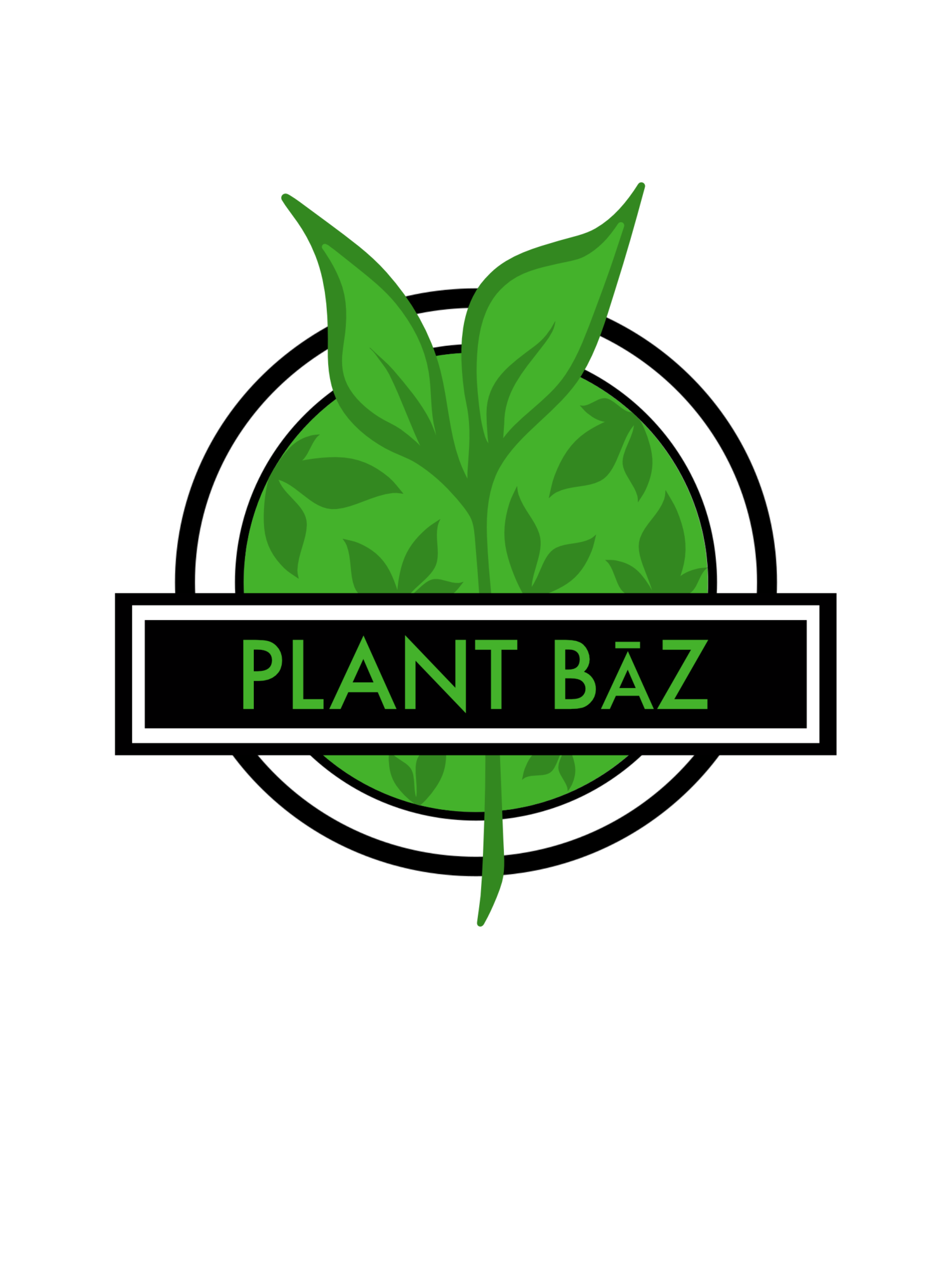 PLANT BAZ, Richmond  Vegan fast food, burritos, burgers, wings.