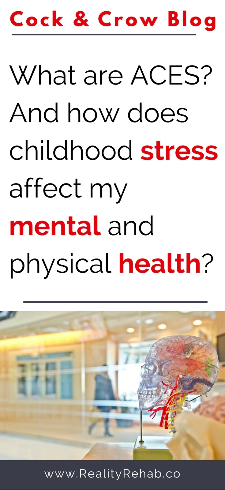 What are ACEs? And how does childhood stress affect my mental and physical health in adulthood? | Cock and Crow -- BLOG