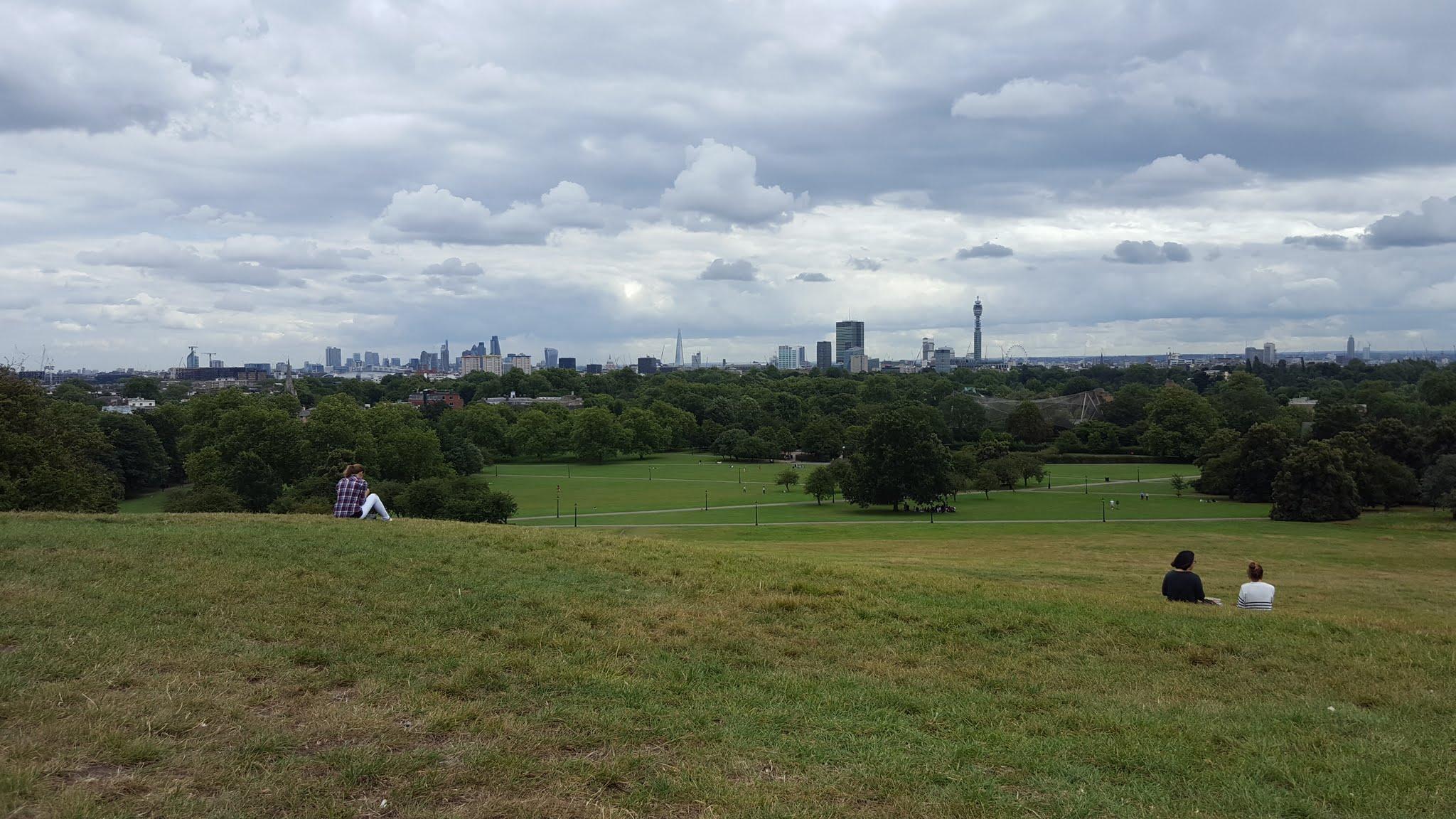 Primrose Hill 2016