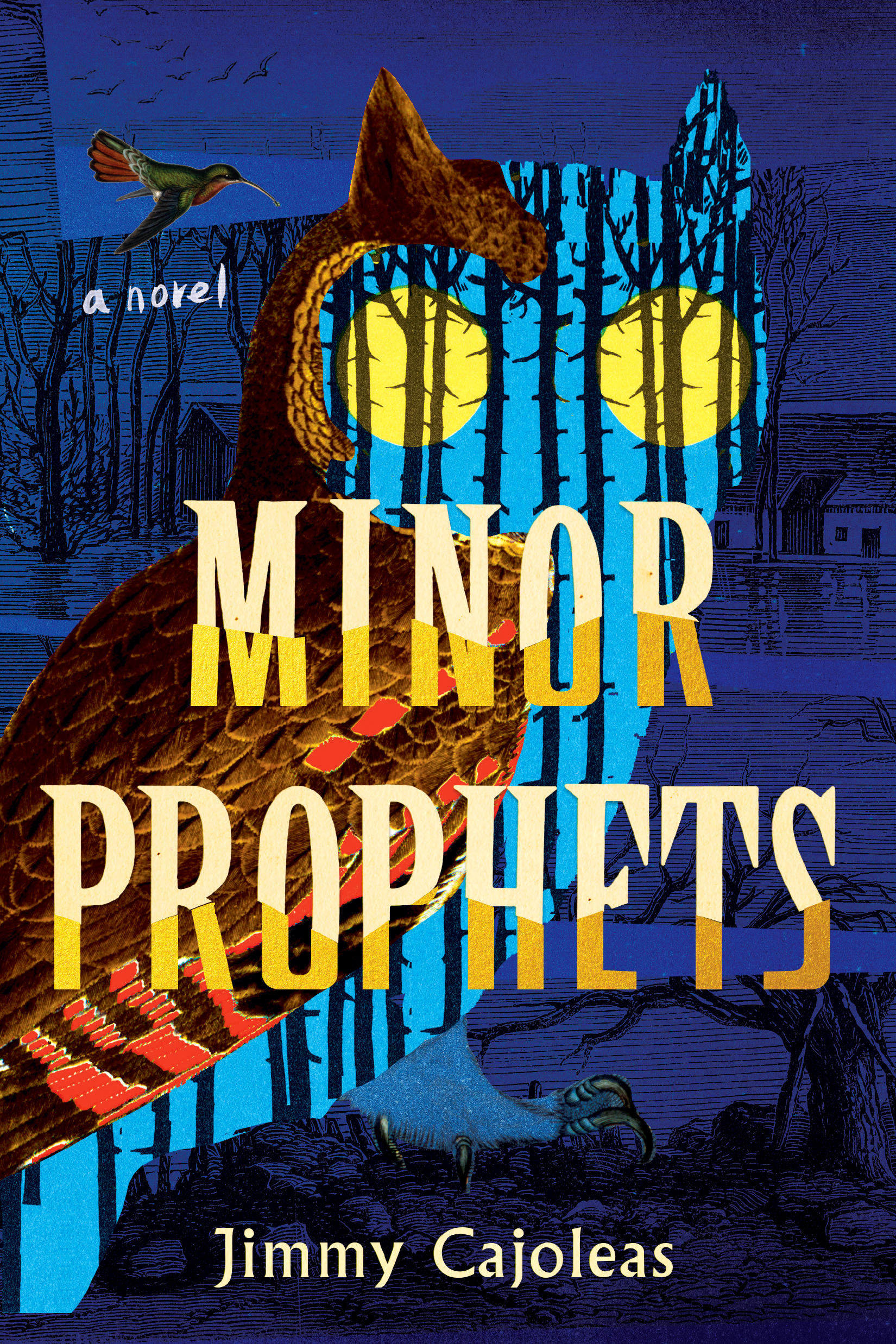 Minor ProphetsJimmy Cajoleas - Lee has always seen visions: cats that his mother promises aren't really there, a homeless man who he's convinced is out to get him, and three men who give him ominous warnings in the woods. His mother and his sister Murphy try to keep him grounded in the real world. But when his mother dies in a car accident and her horrible husband tries to adopt them, Lee and Murphy flee to their grandmother's ranch, which they've only heard about in stories.Read more here »