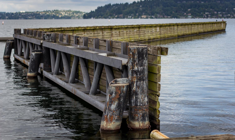 Seattle_Washington Kent_Gresham_07.jpg