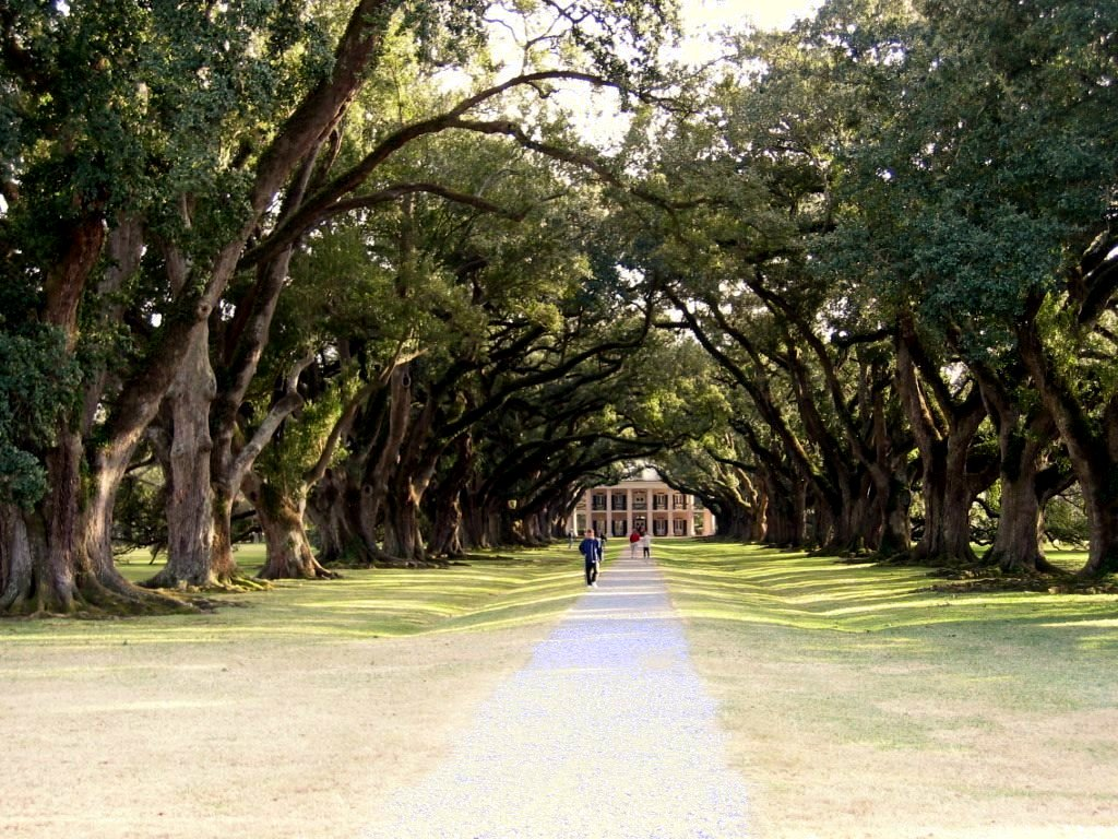Oakalleyplantation.jpg