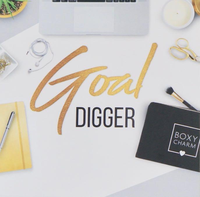November 2018 Boxy Charm - Goal DiggerDSC09015.jpg