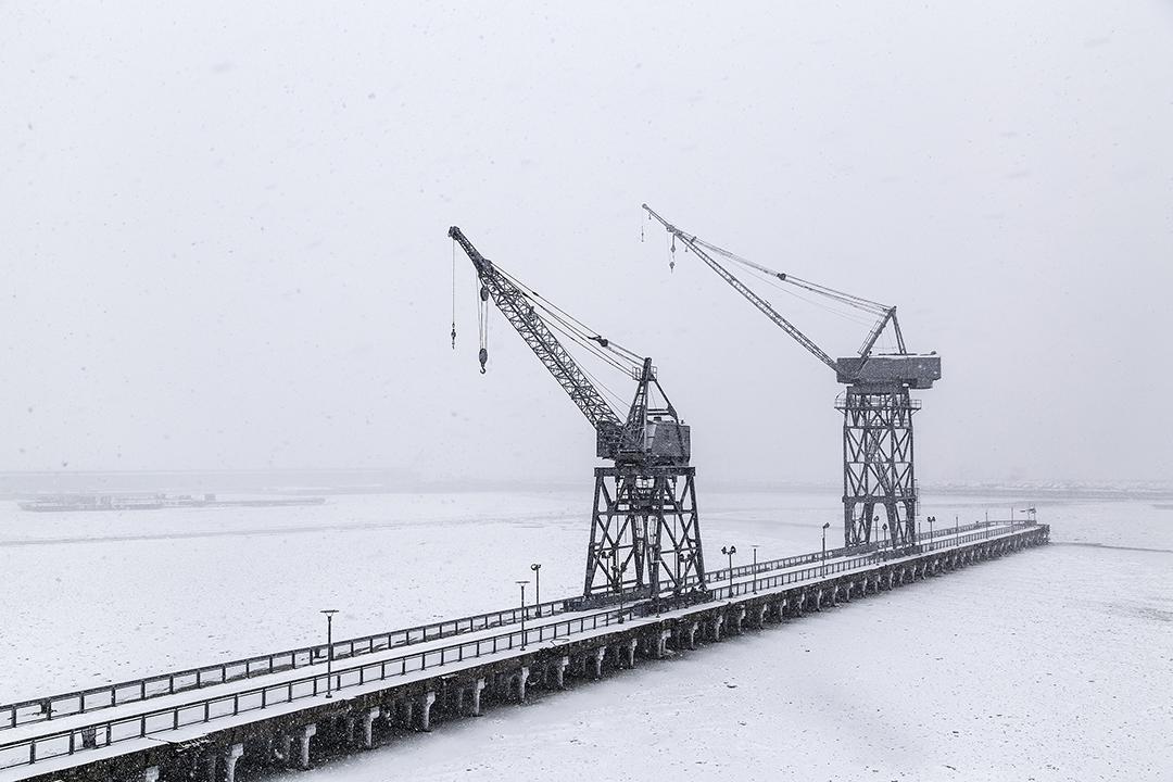 The Cranes 7M5A1827-72.jpg