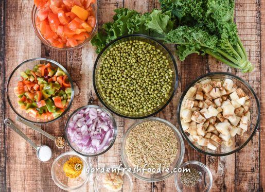 Jessica Meyers Altman Kitci Indian Stew #2.jpg