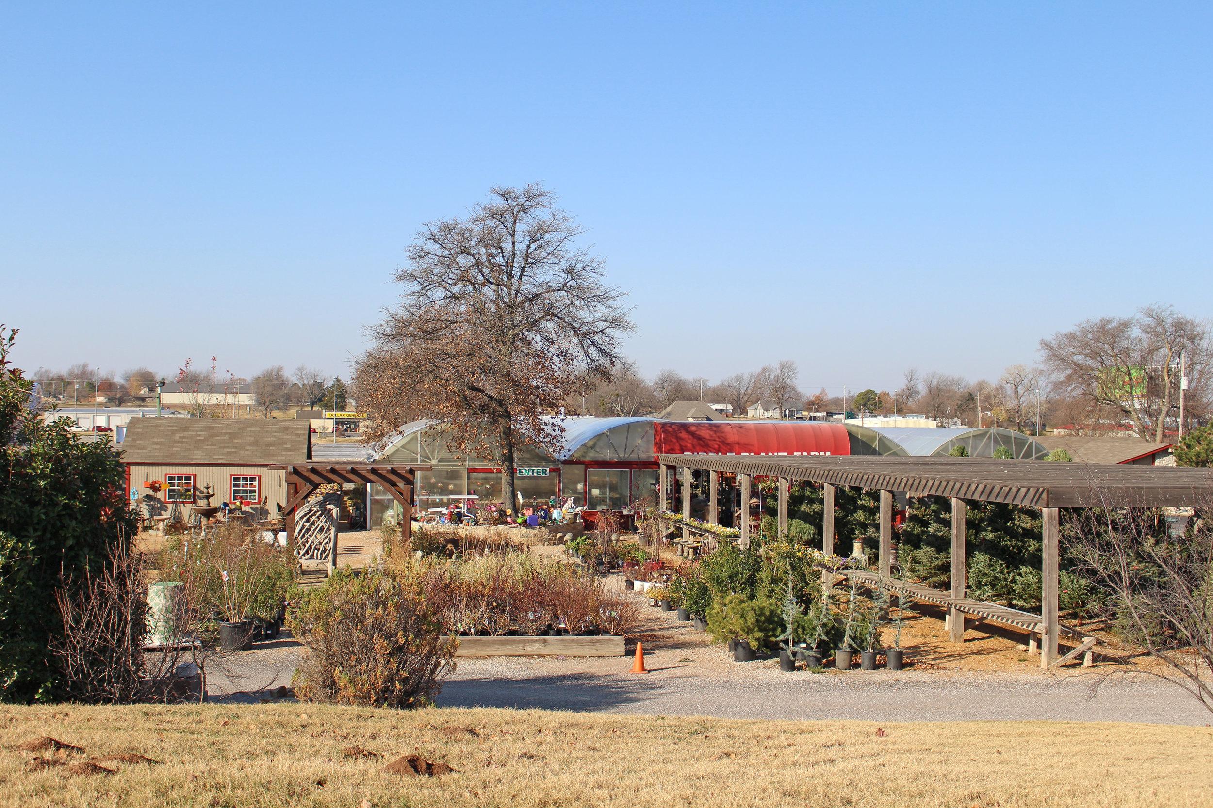 riddle plant farm - prattville 3510 summit boulevard
