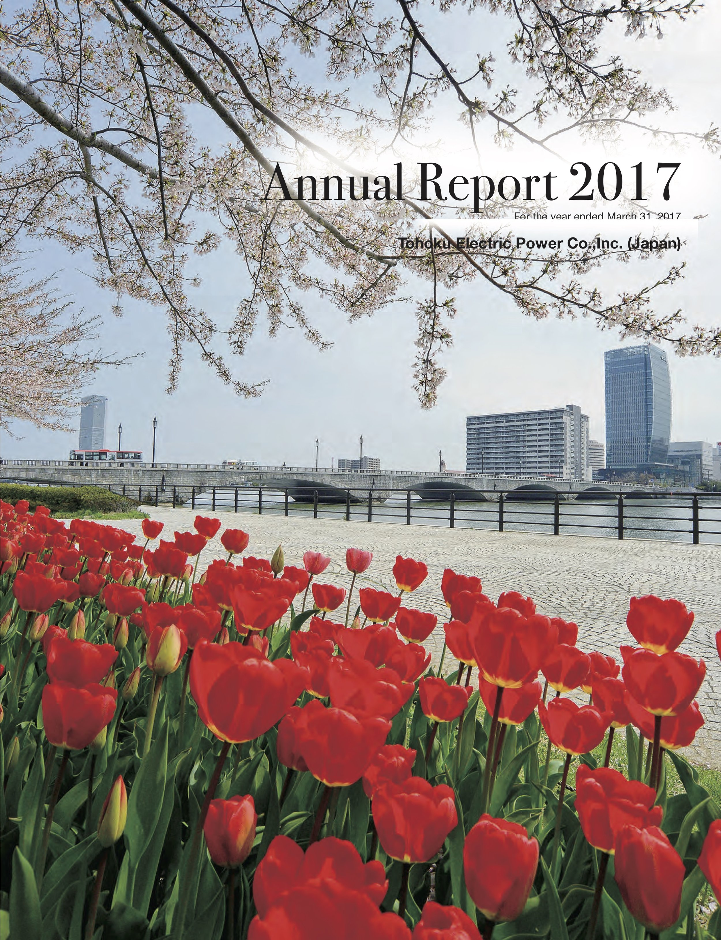 Tohoku Electric Annual Report 2017