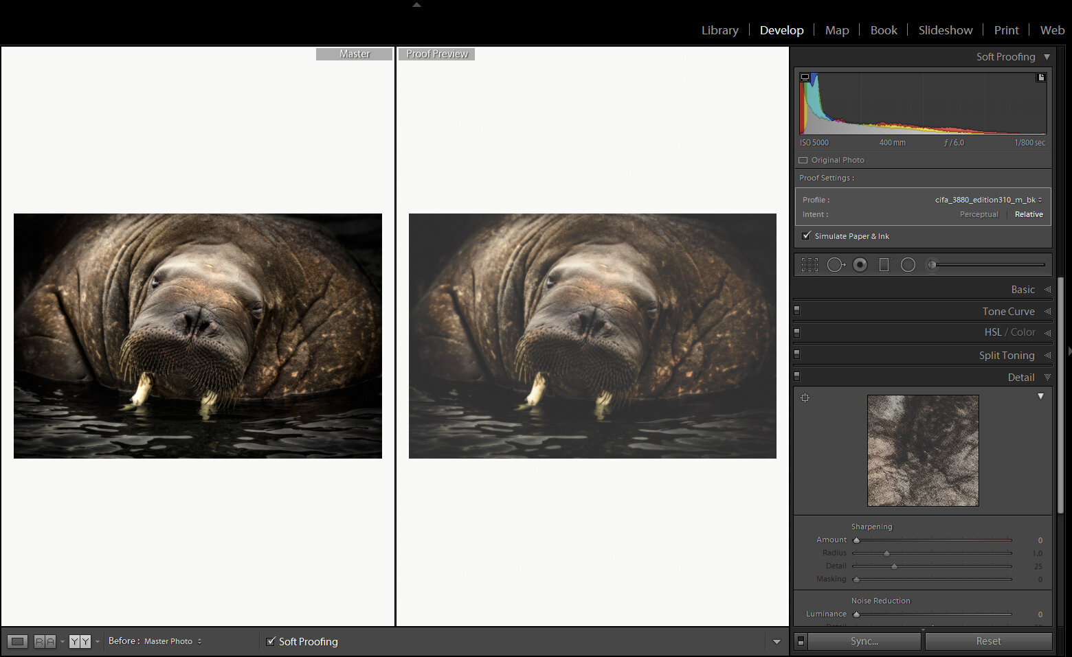 How to make a Proof copy in Lightroom