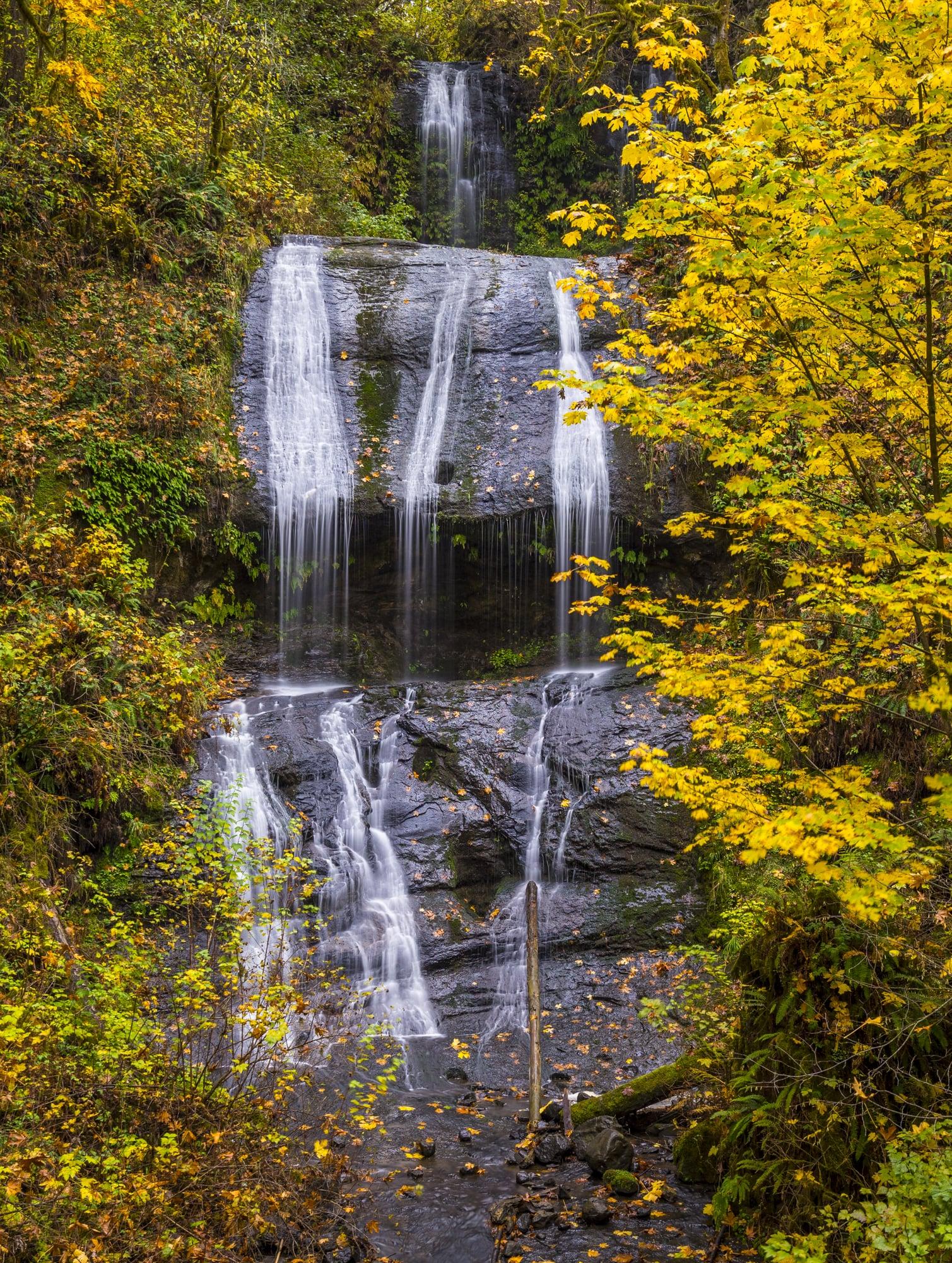 Royal Terrace Falls, McDowell Creek Park, Oregon