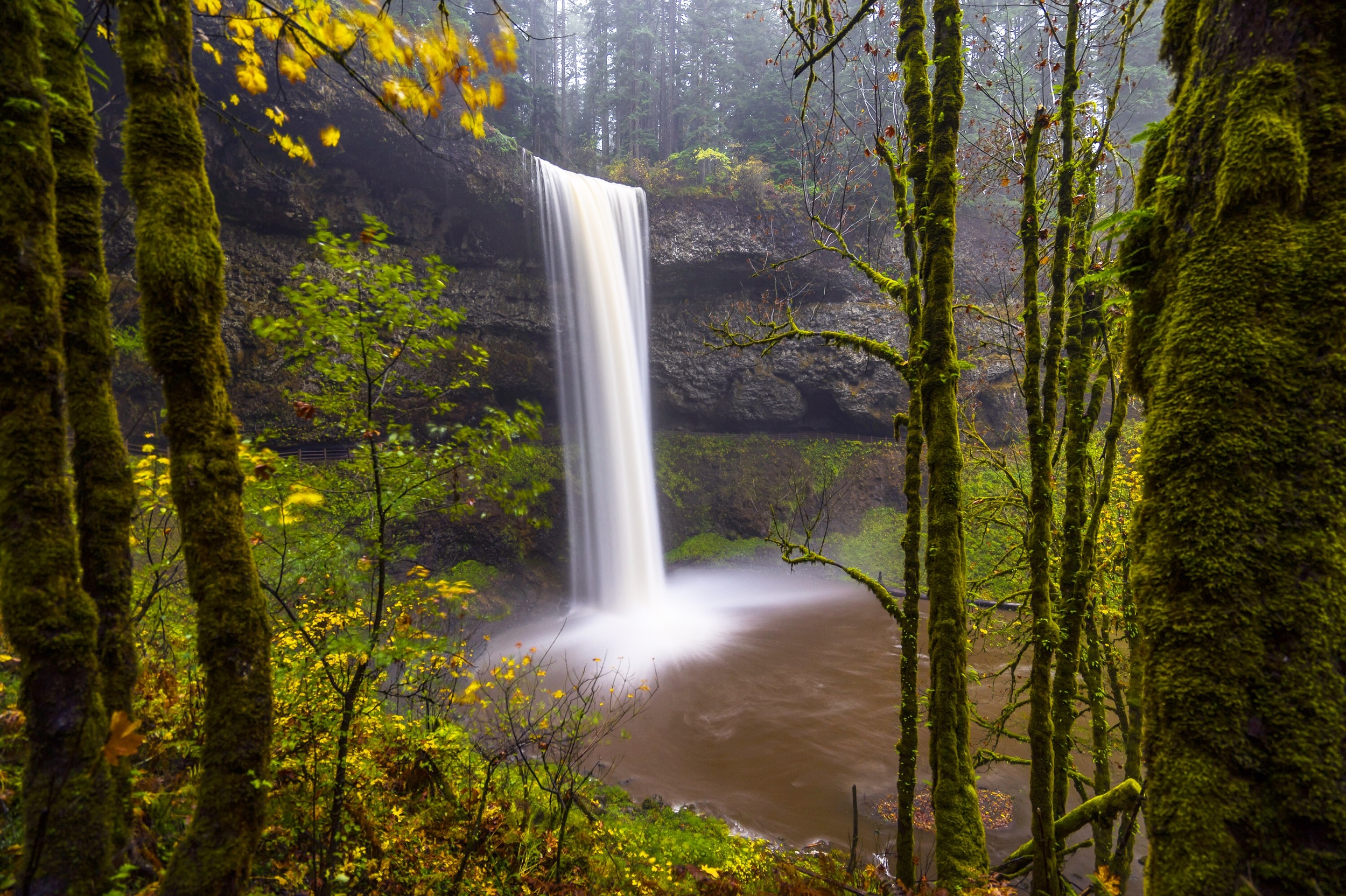 South Fall, Silver Fall State Park, Oregon