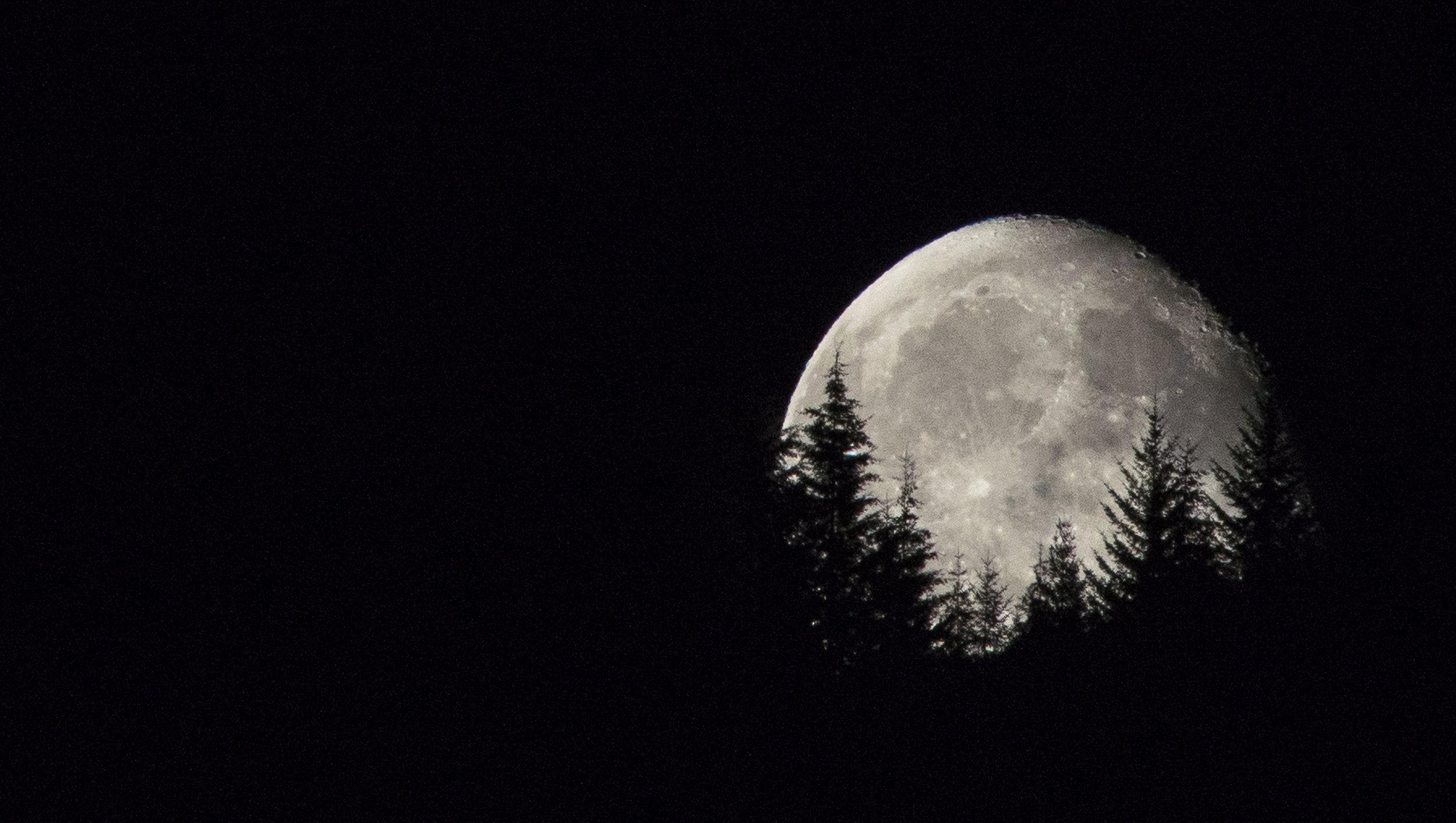 Full Moon Rising, Oregon