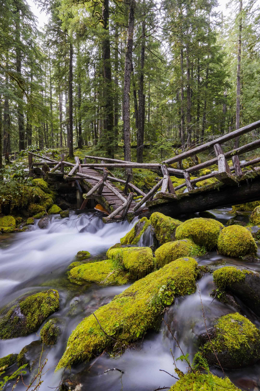 Broken Trails, Oregon