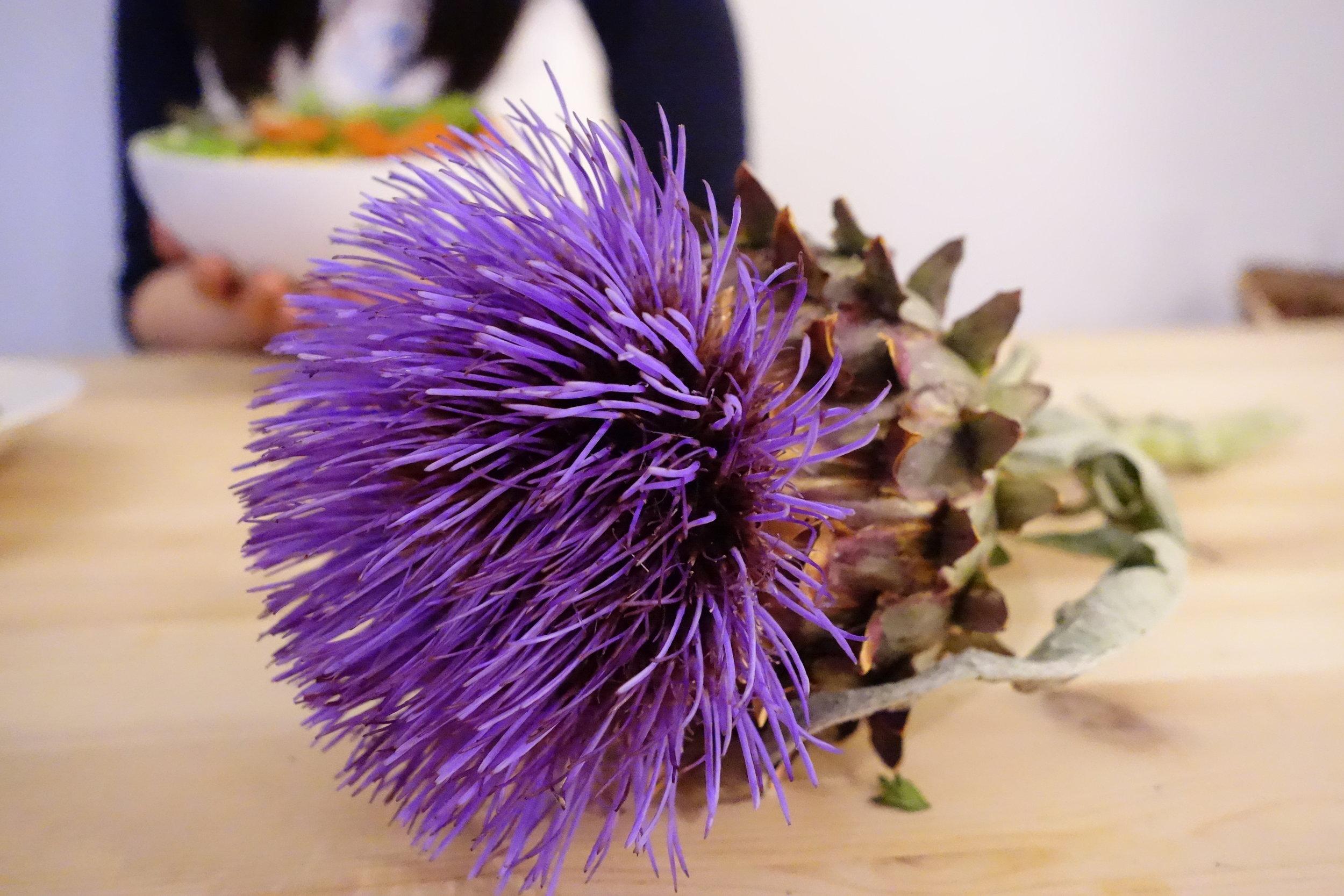 Artichoke Flower.