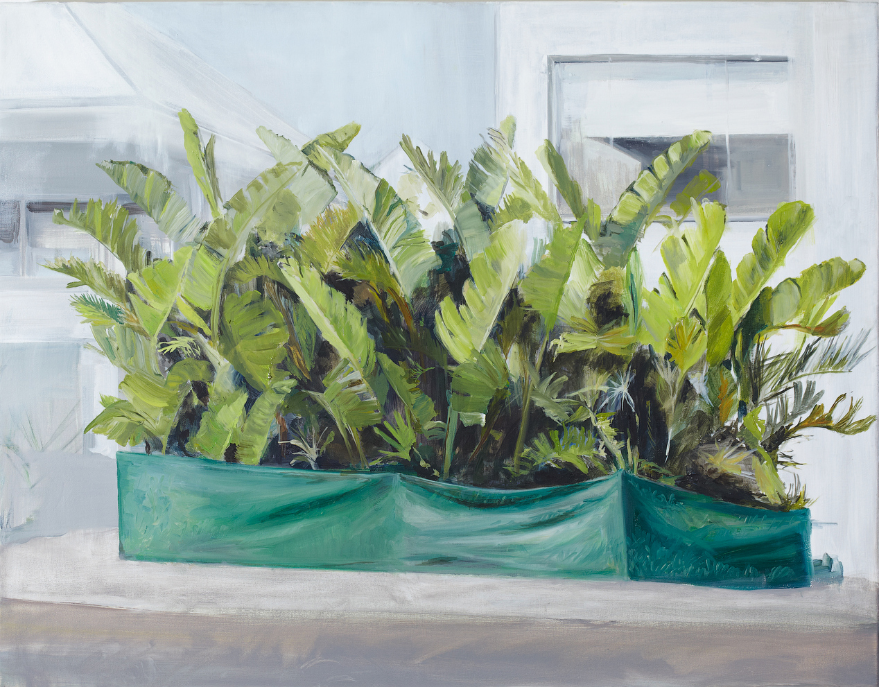 Specimen 2012 Oil on Canvas 60 x 77cm