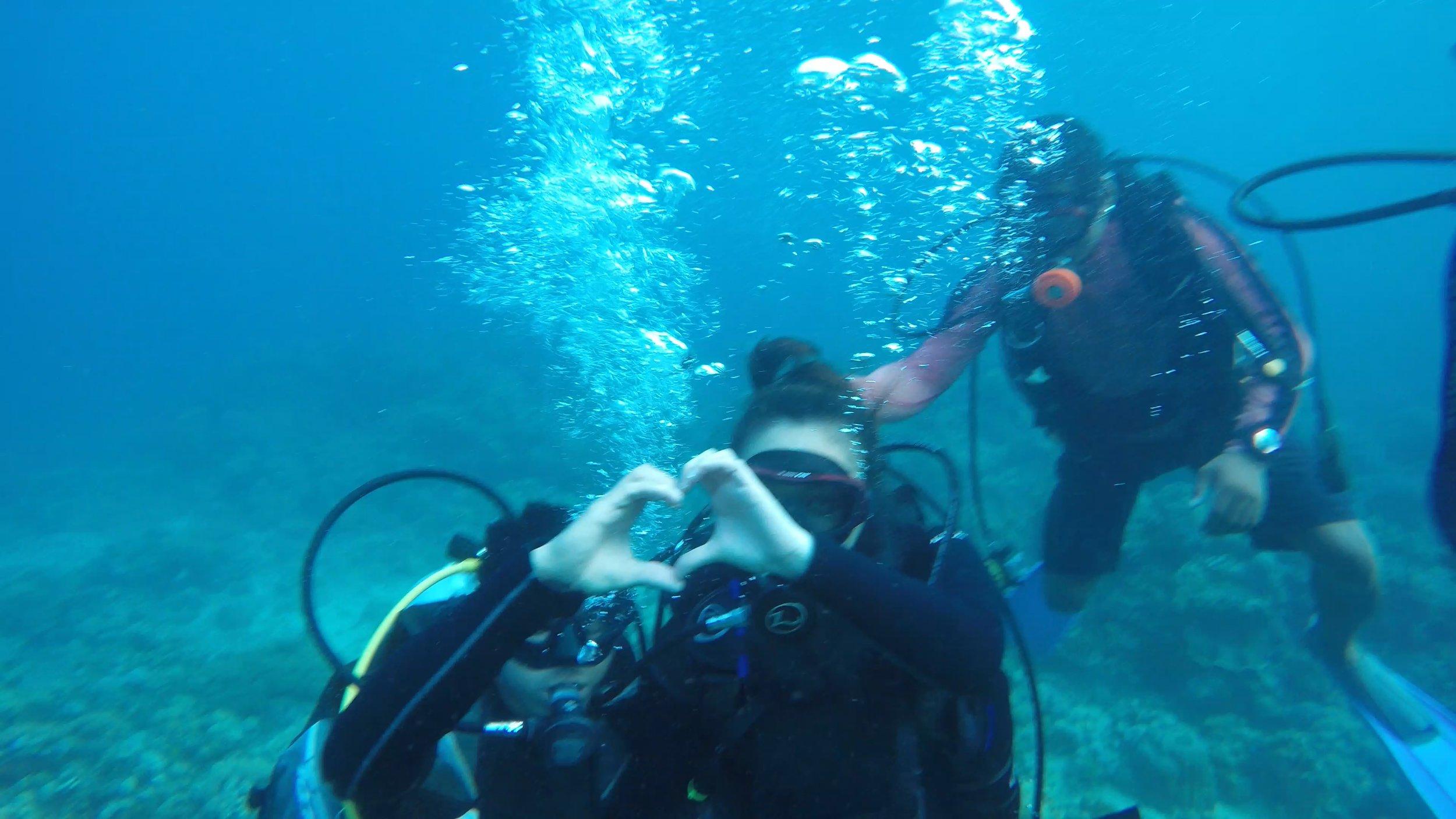 Bauan Diver's Sanctuary, Philippines 2017