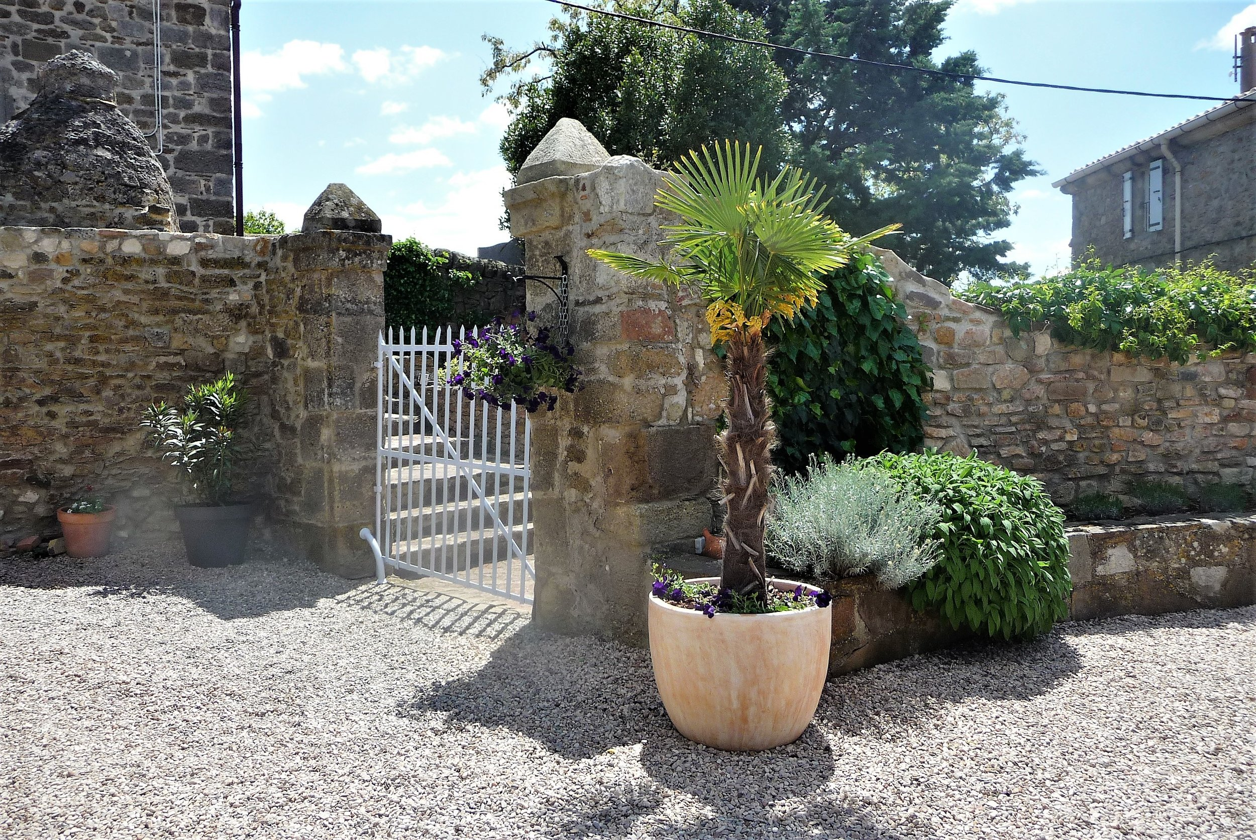 The walled courtyard garden.