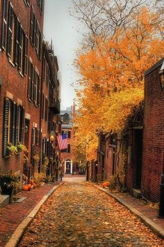 We've saved the very best for last! Ok so we're a little biased, but wander through the cobble stone, lamplit streets of Beacon Hill on a cool fall evening and see if it doesn't become one of your absolute favorite places too!