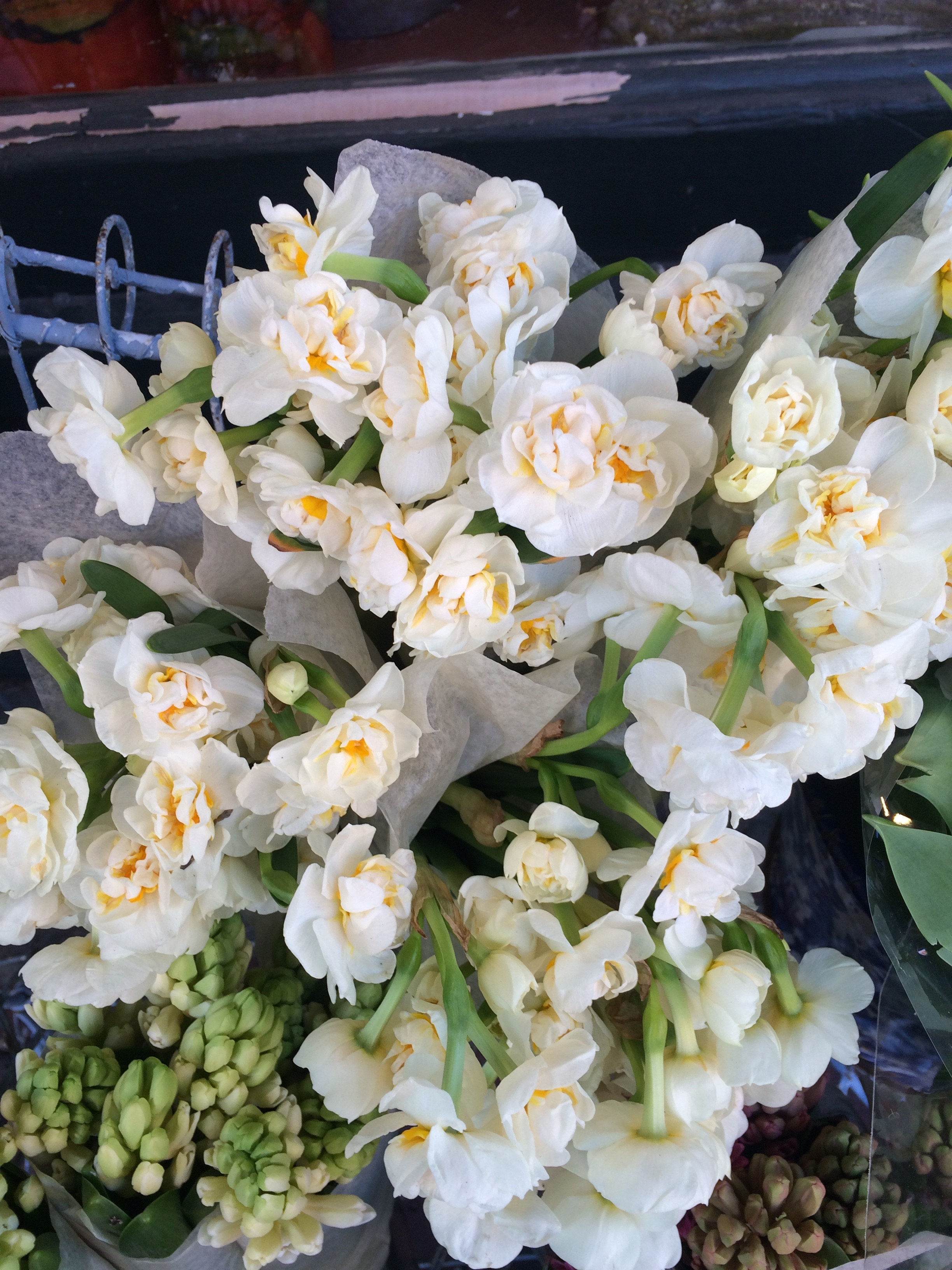 Heavenly scented paper-whites in creamy whites and golds.