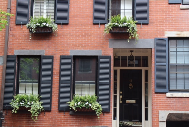 Window boxes boston