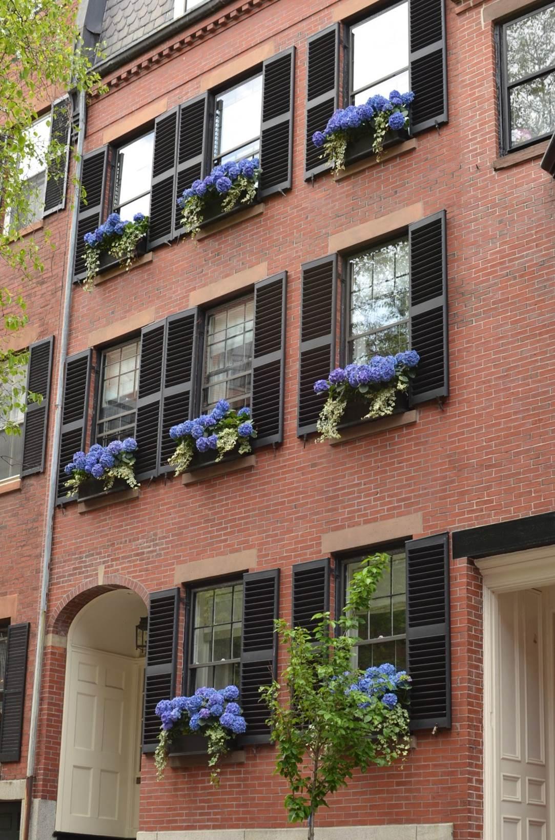 Planting Design Boston