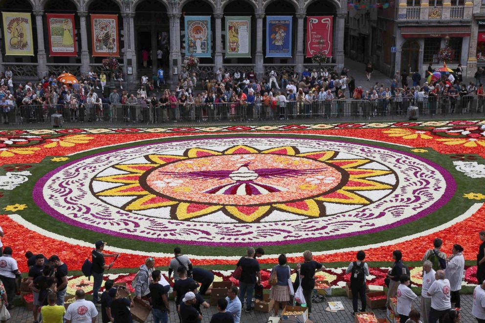 Flower Carpet 3.jpg
