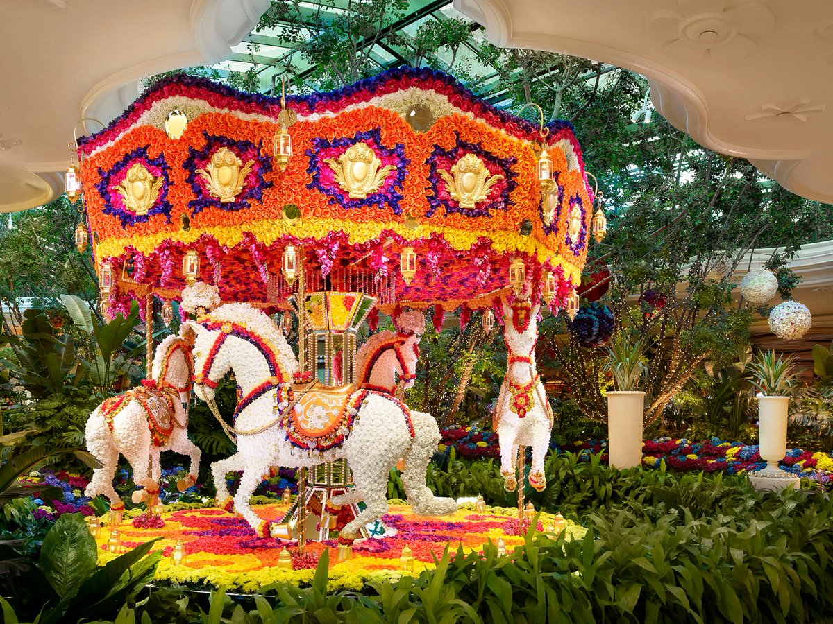The infamous Encore Boston flower carousel by floral deisgner Preston Bailey.