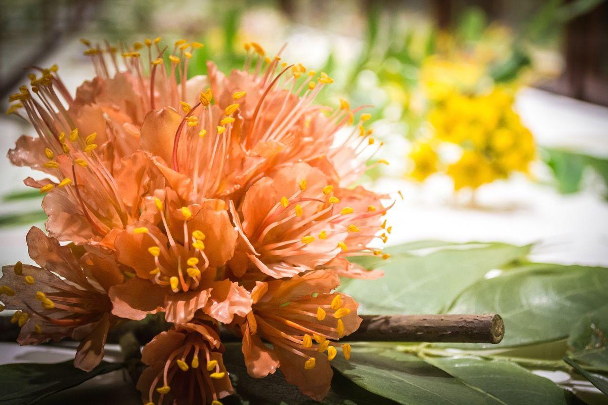 glass flowers 3.jpg